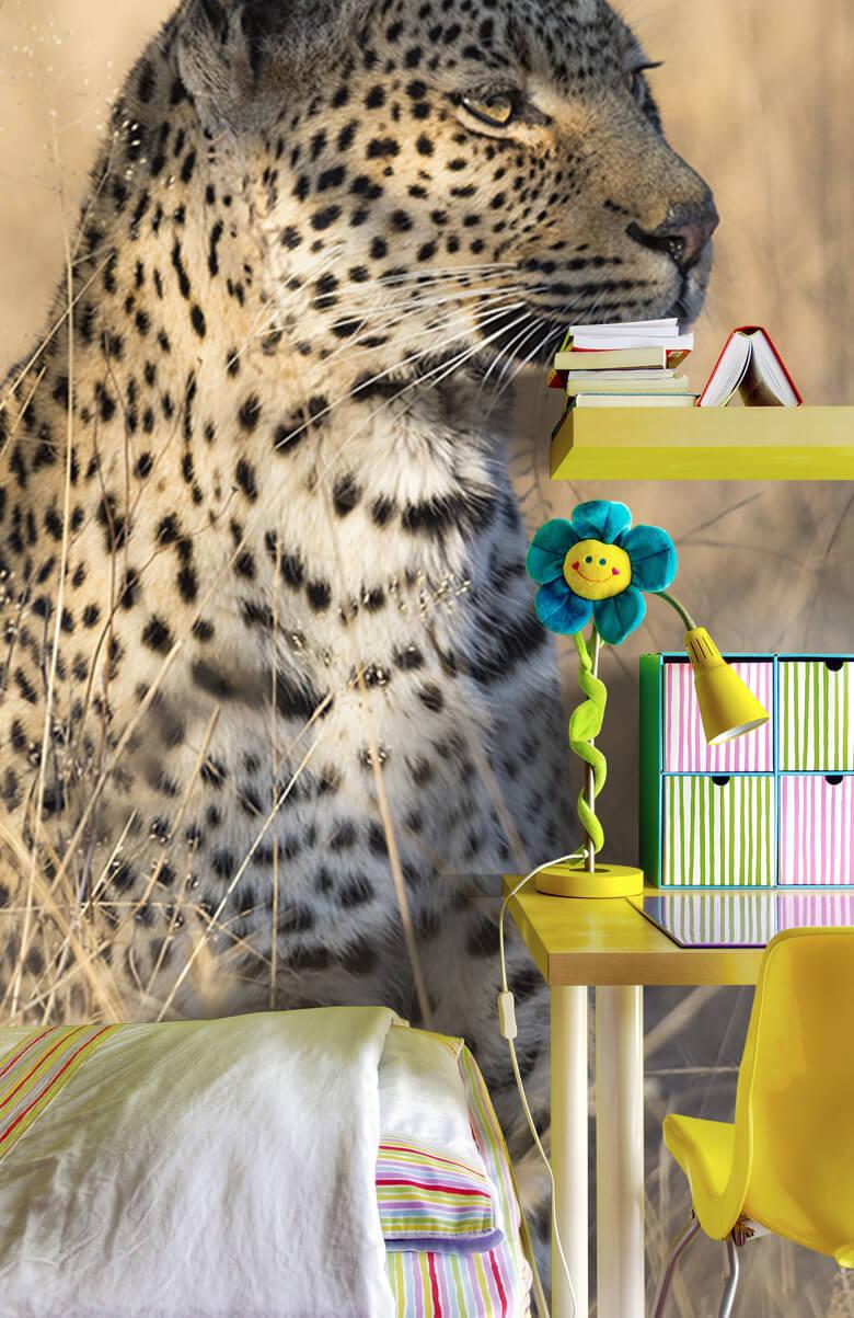 luipaarden Jagende luipaard 8