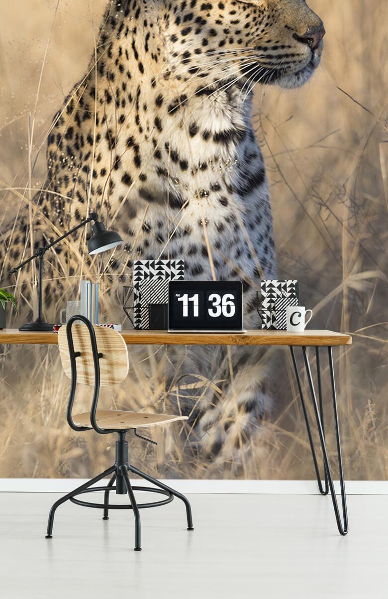 luipaarden Jagende luipaard 10