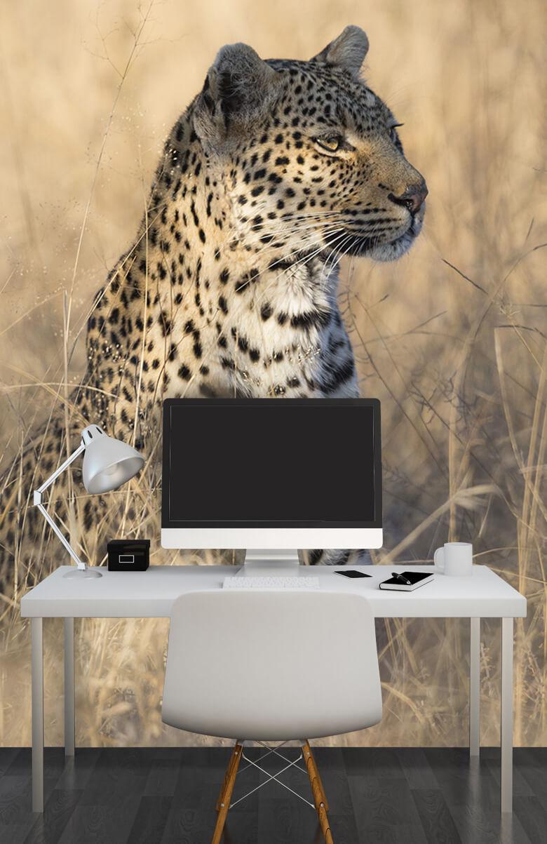 luipaarden Jagende luipaard 11
