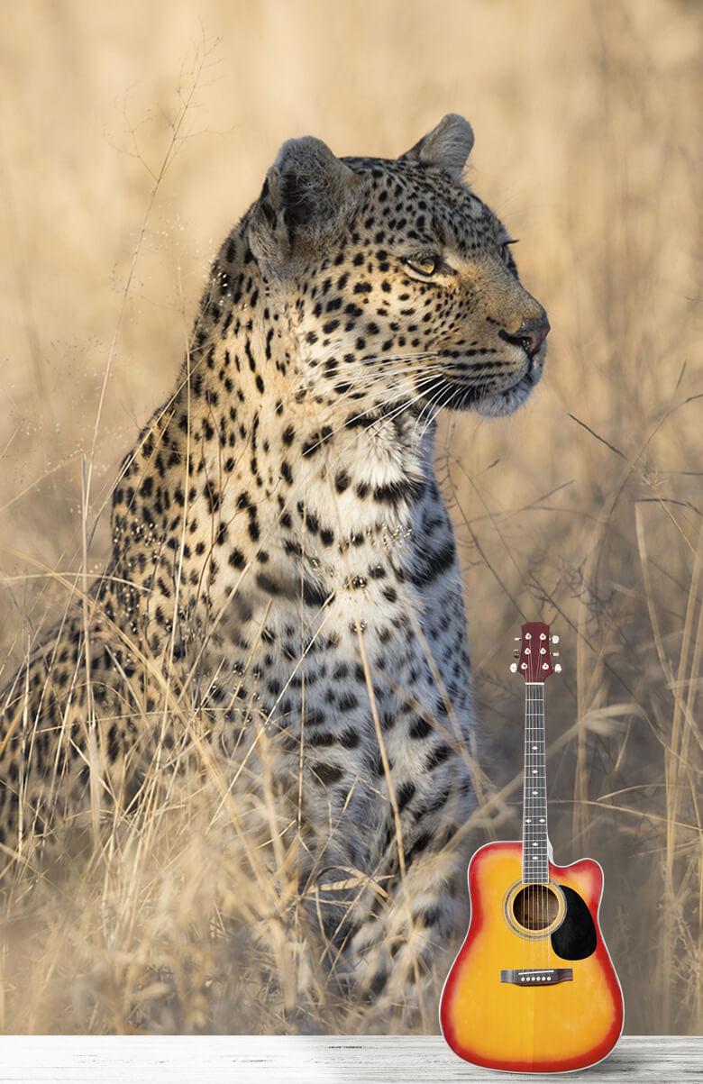 luipaarden Jagende luipaard 1