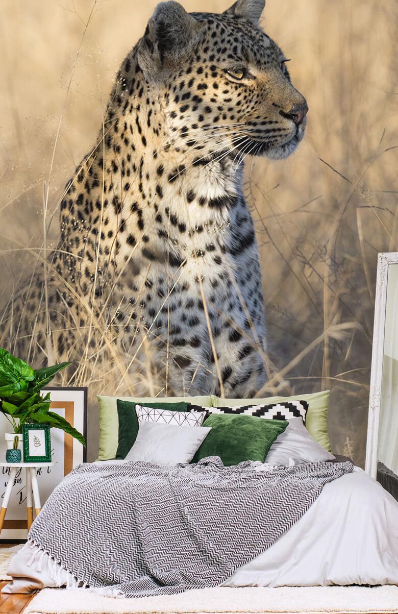luipaarden Jagende luipaard 13