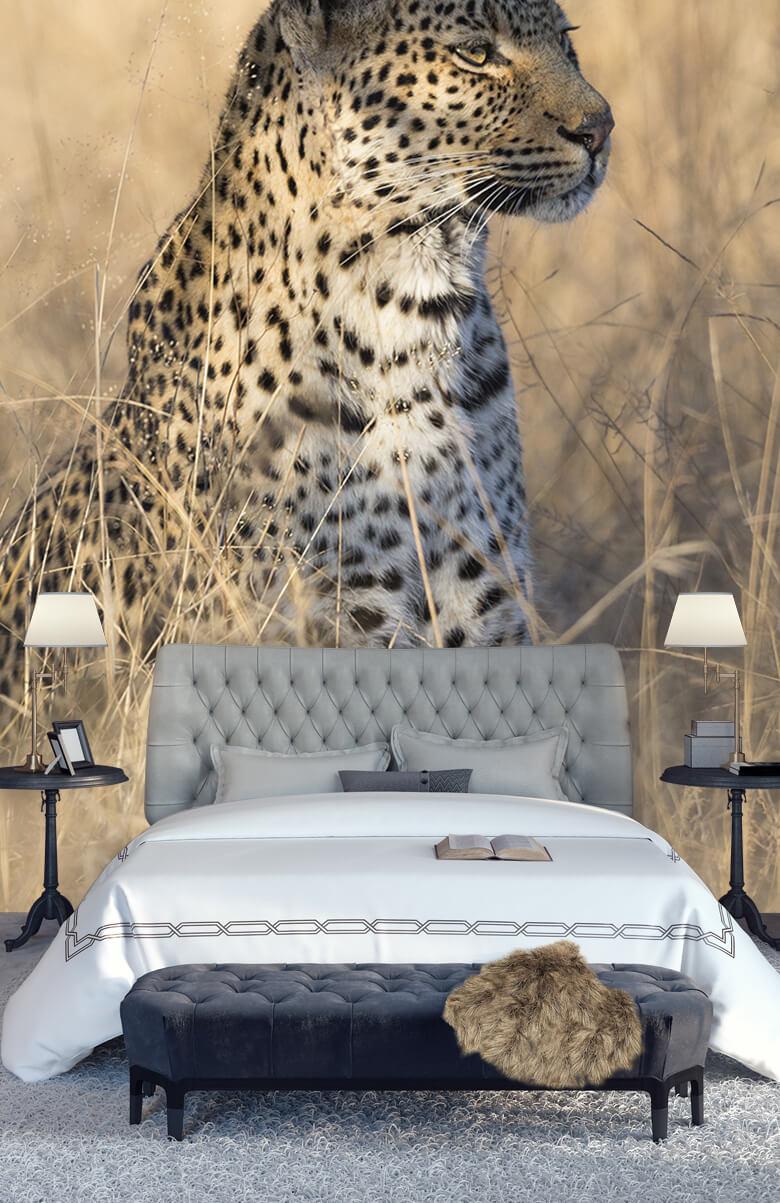 luipaarden Jagende luipaard 14