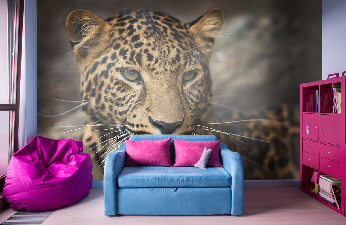 luipaarden Close-up van een luipaard 10