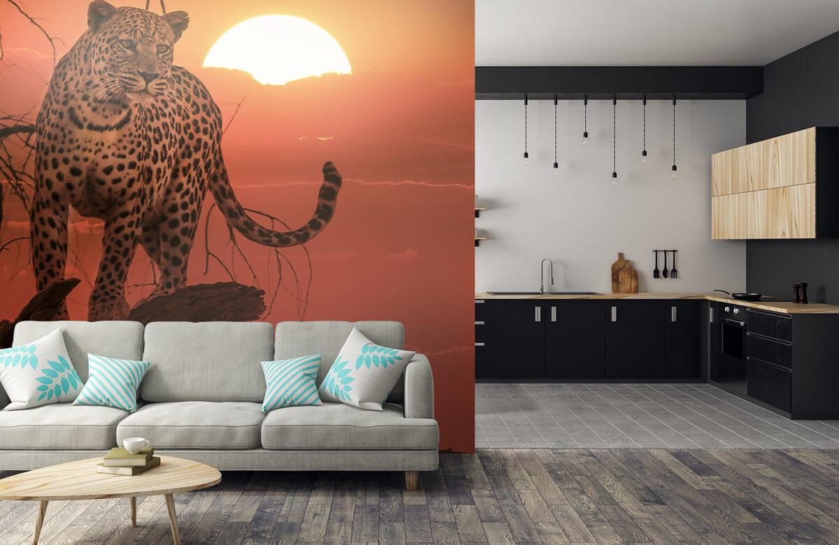 luipaarden Luipaard met ondergaande zon 5
