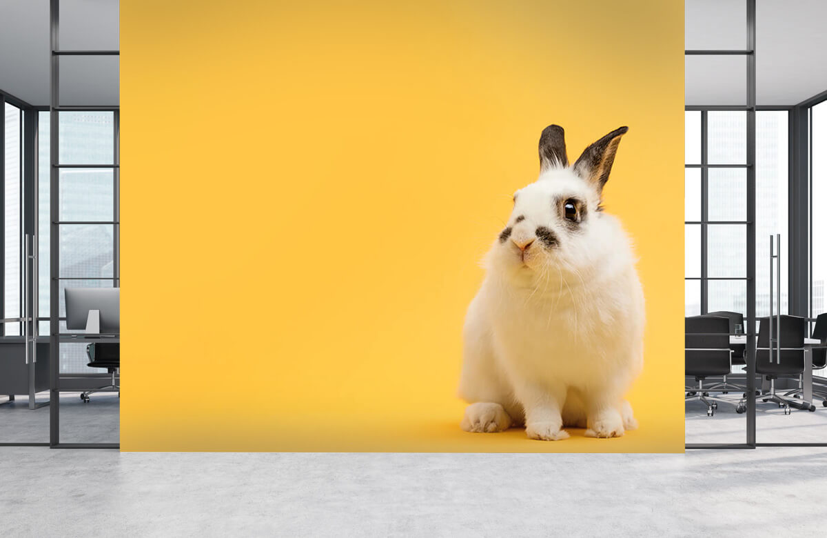 Dieren Poserend konijn 7