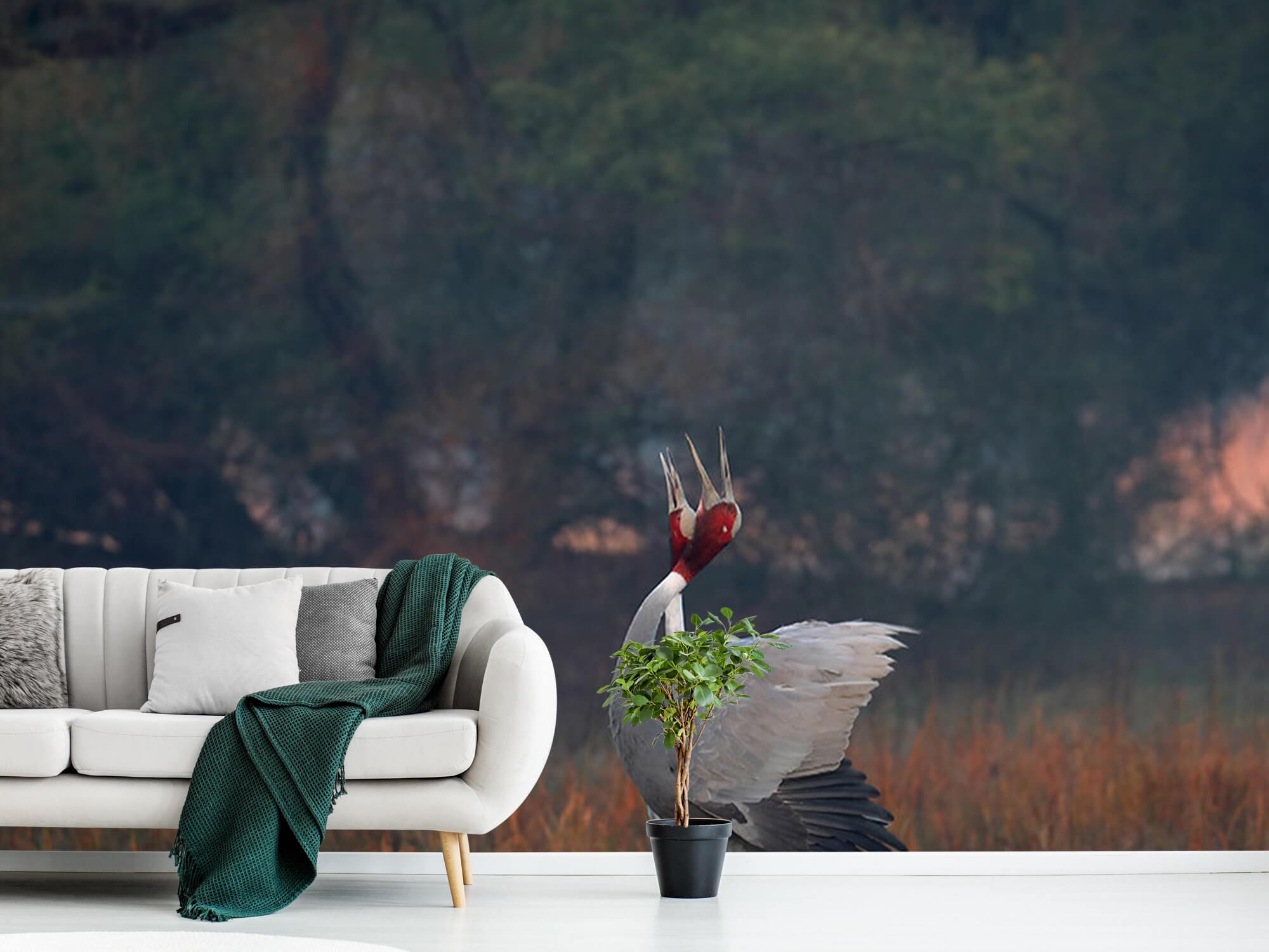 Kraanvogel stel 2