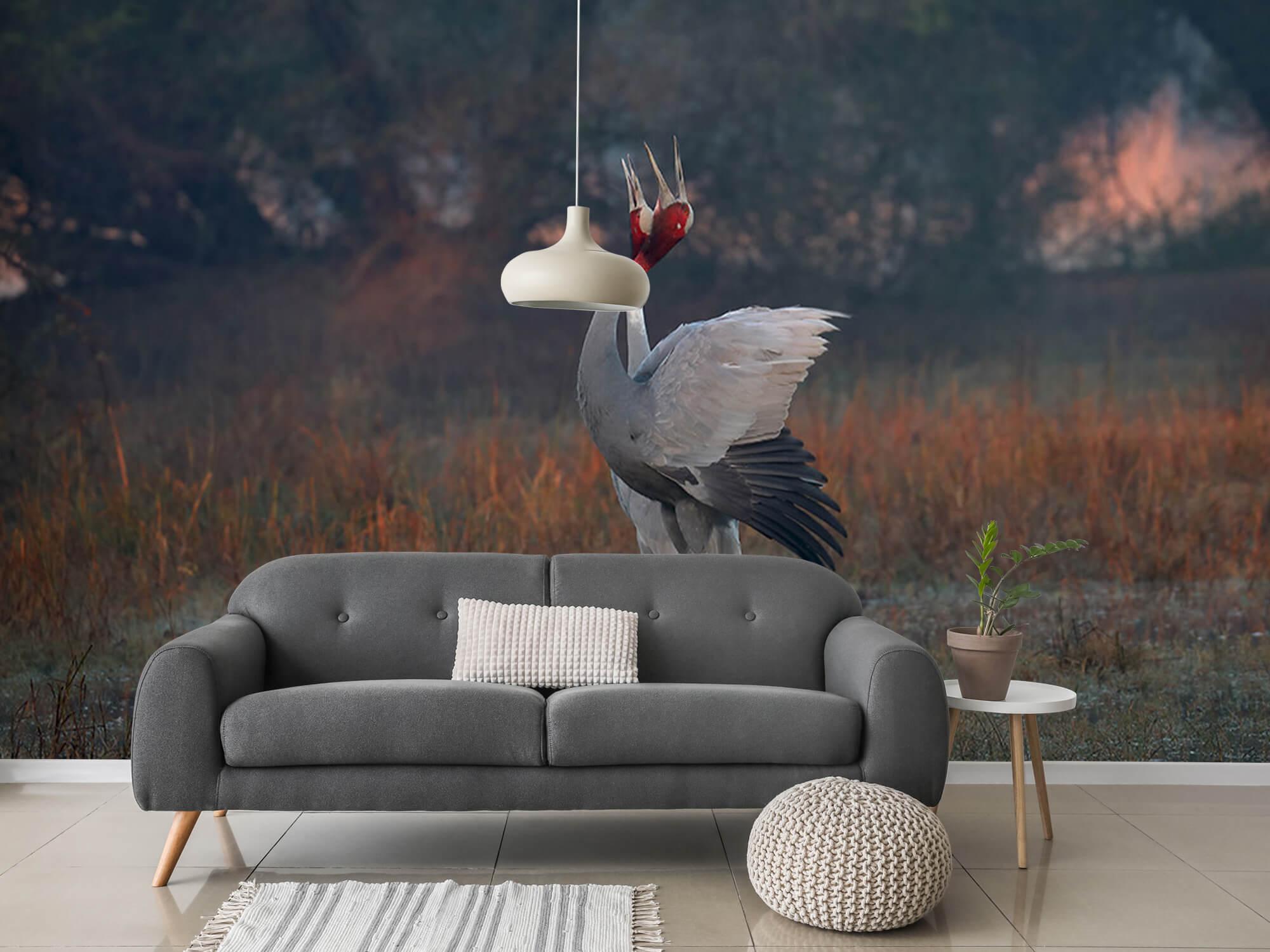 Kraanvogel stel 11