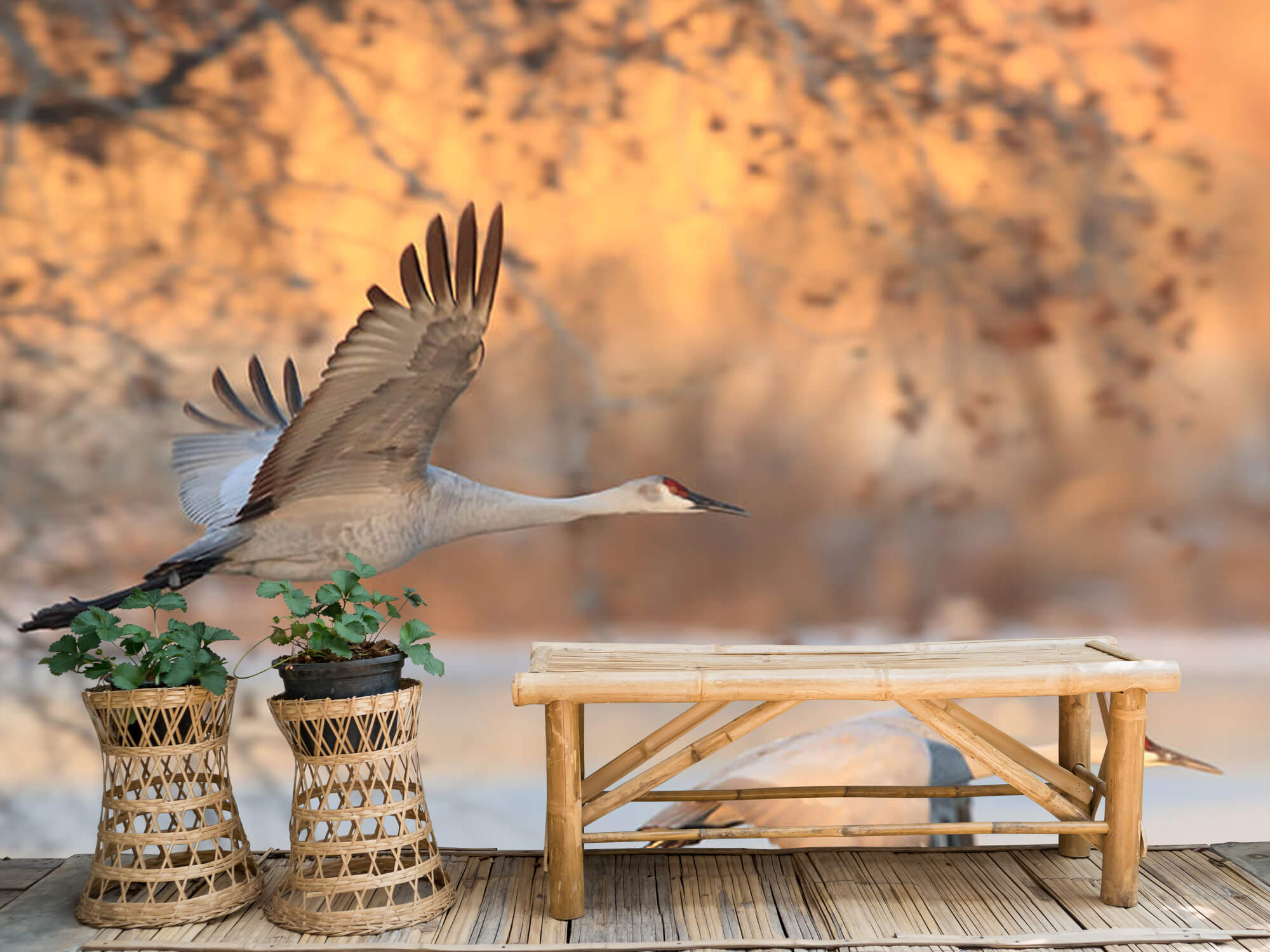 Vliegende kraanvogels 5