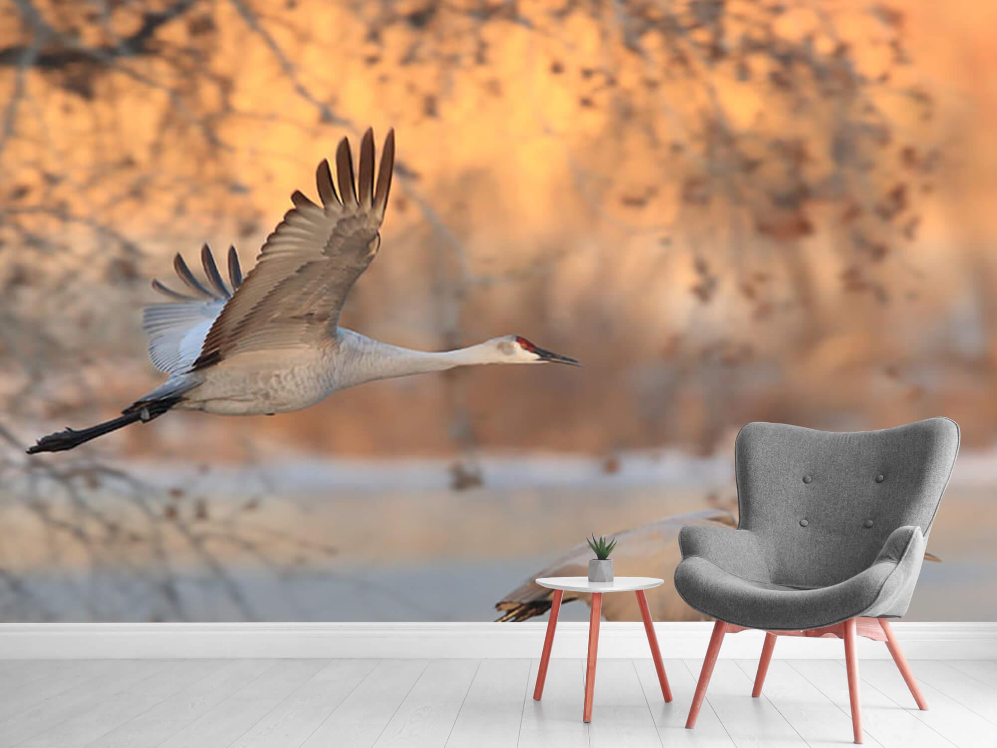 Vliegende kraanvogels 2