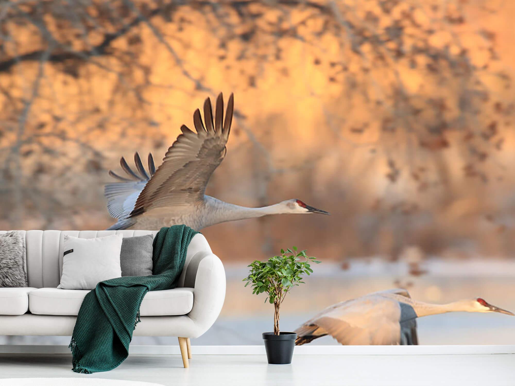 Vliegende kraanvogels 10