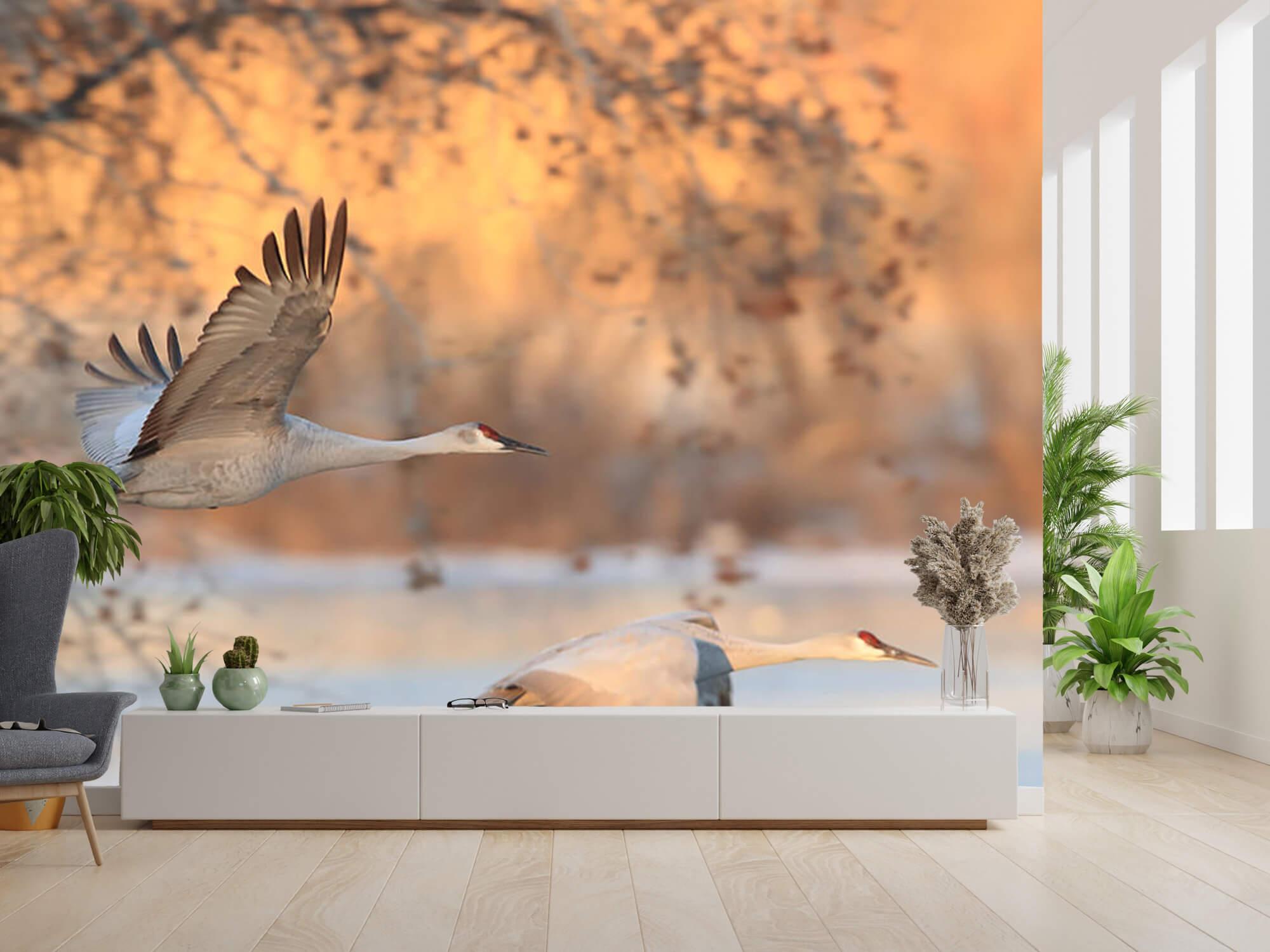 Vliegende kraanvogels 4