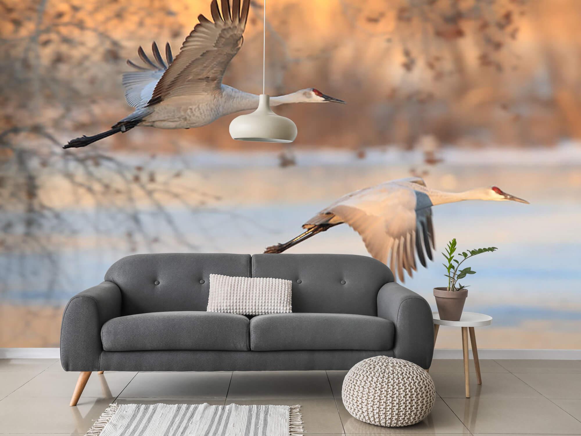 Vliegende kraanvogels 1
