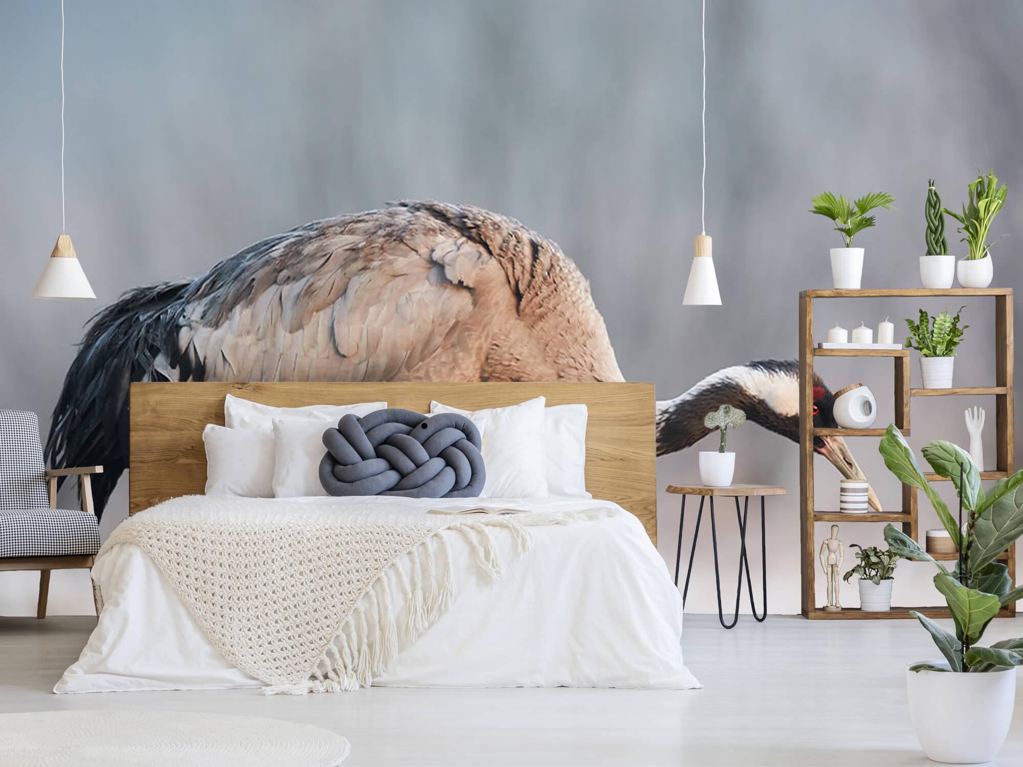 Kraanvogel in de ochtend 7