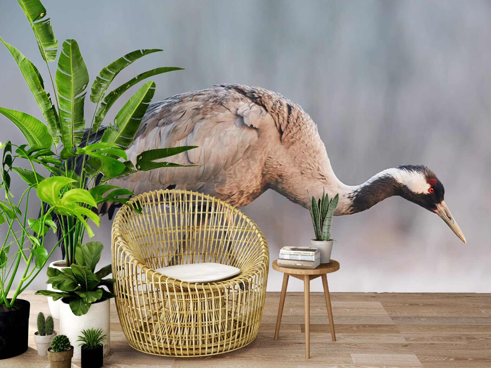 Kraanvogel in de ochtend 8