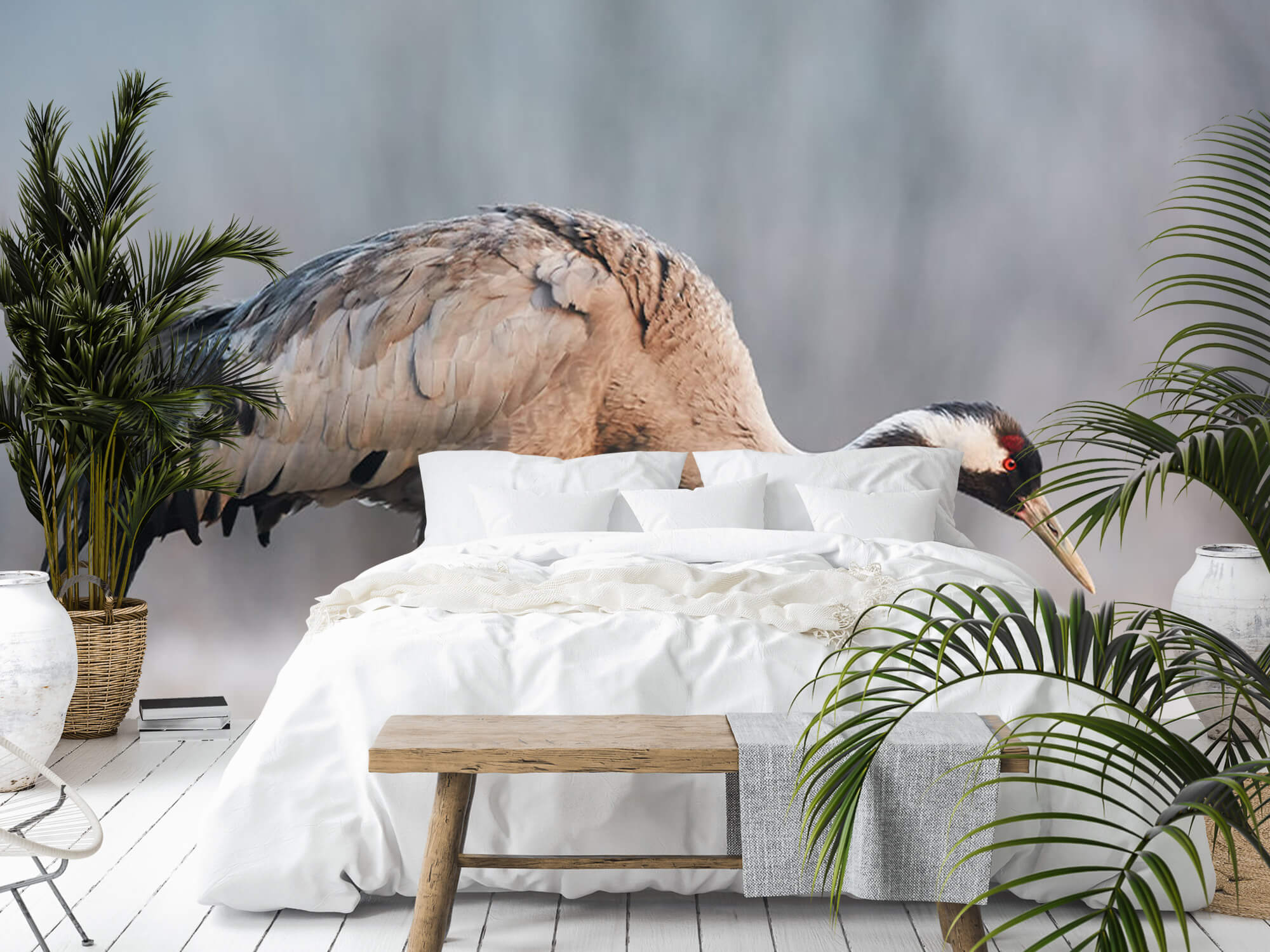 Kraanvogel in de ochtend 10