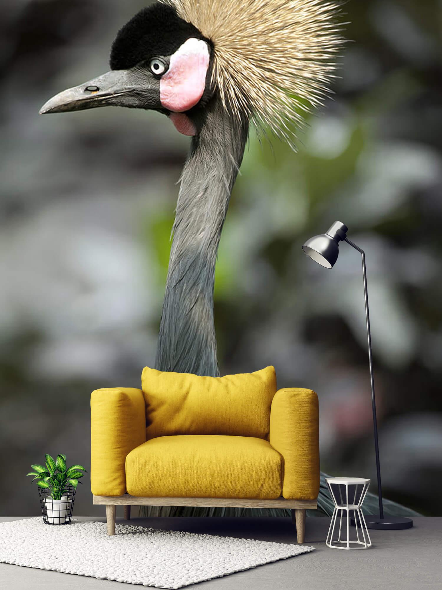 Kraanvogel close-up 1