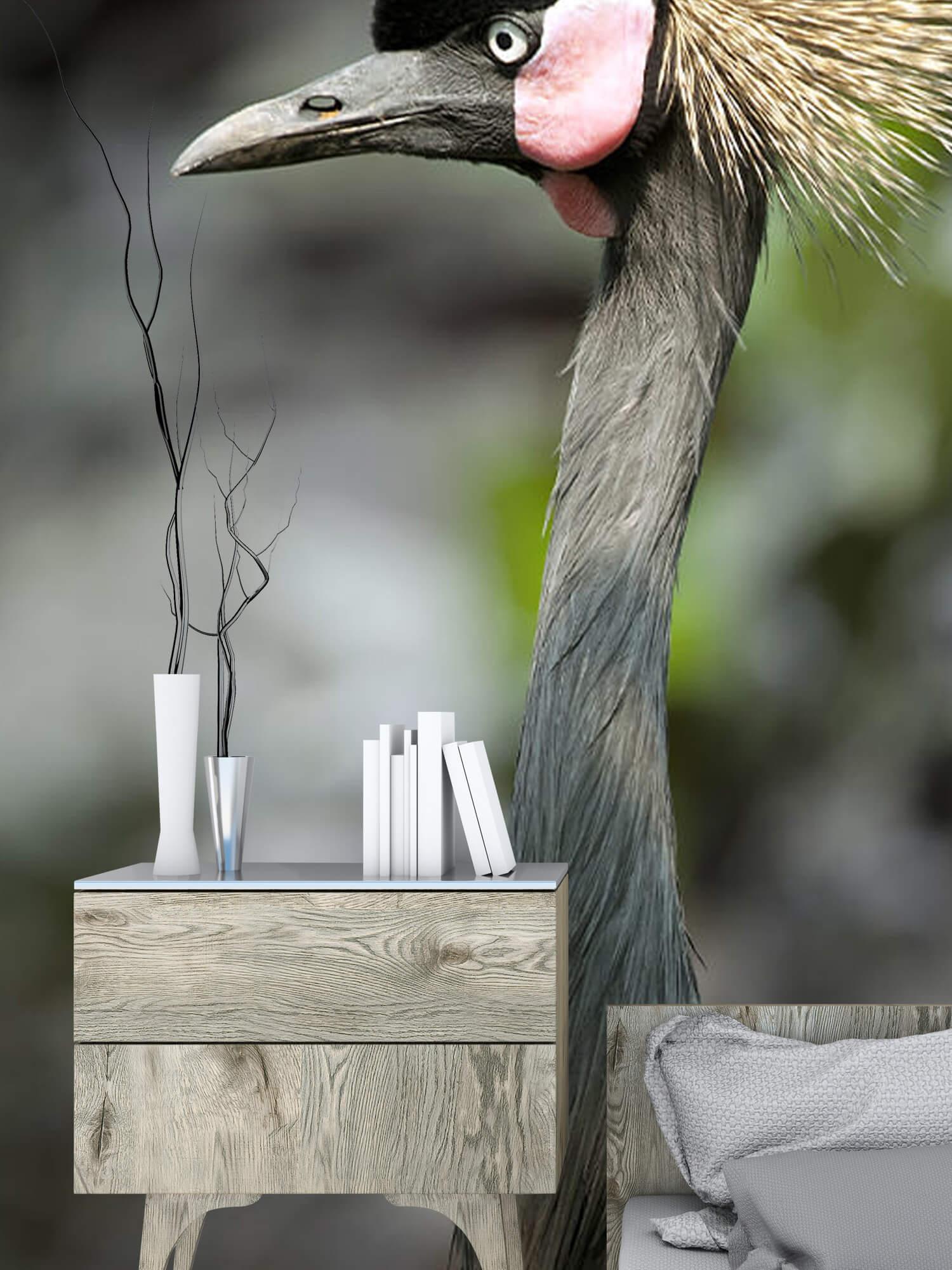 Kraanvogel close-up 6