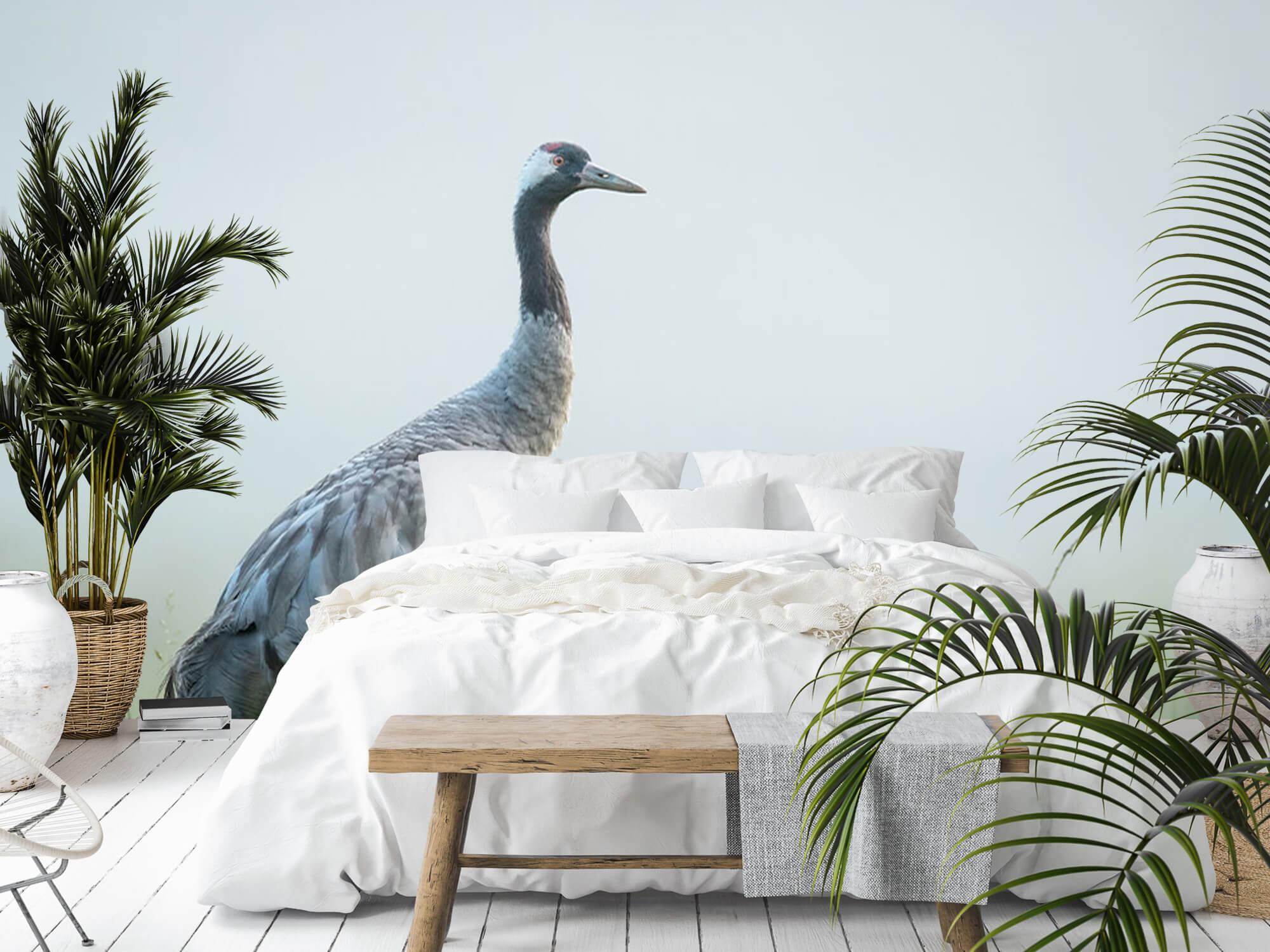 Kraanvogel in de ochtendmist 8