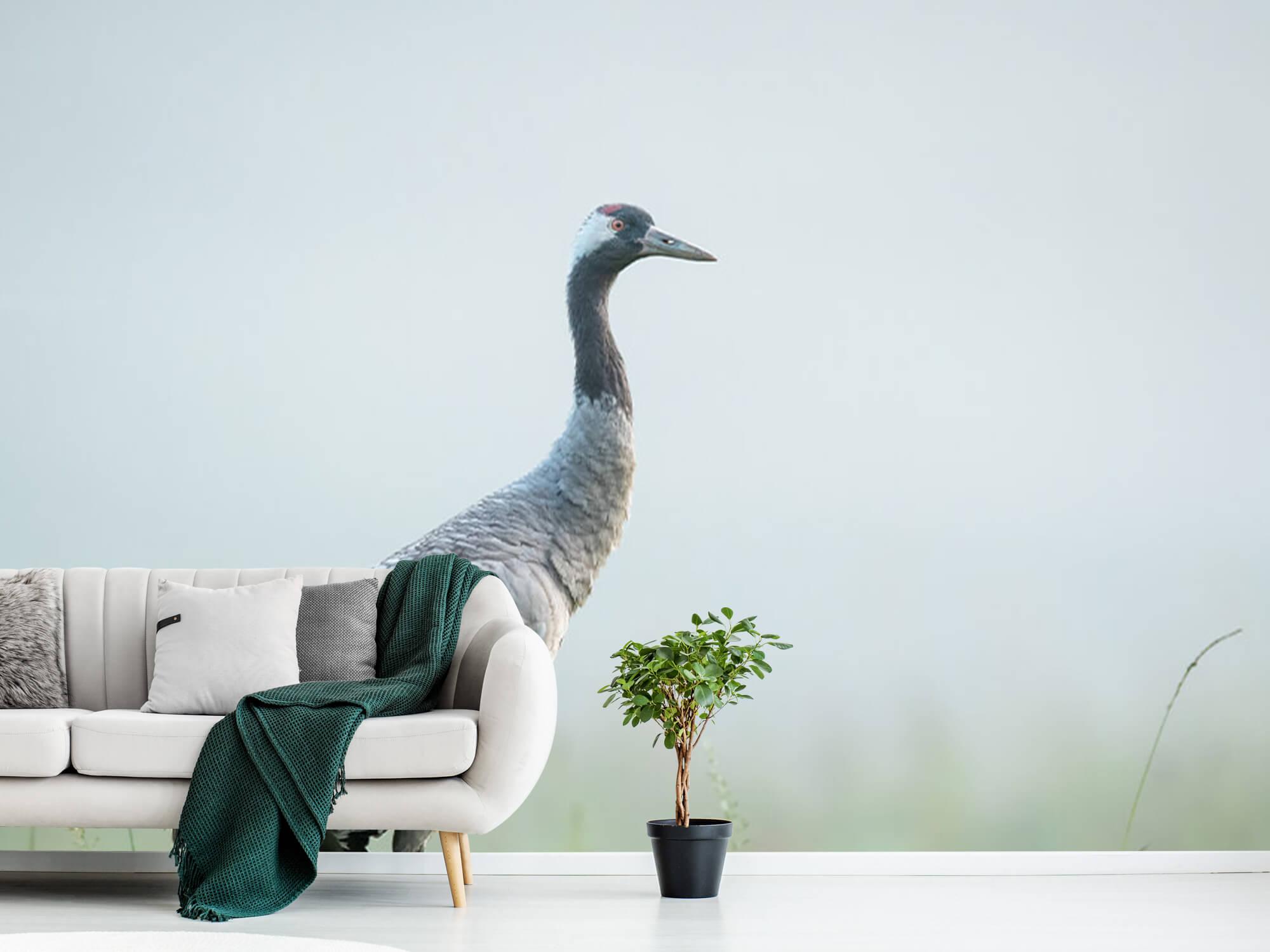 Kraanvogel in de ochtendmist 10