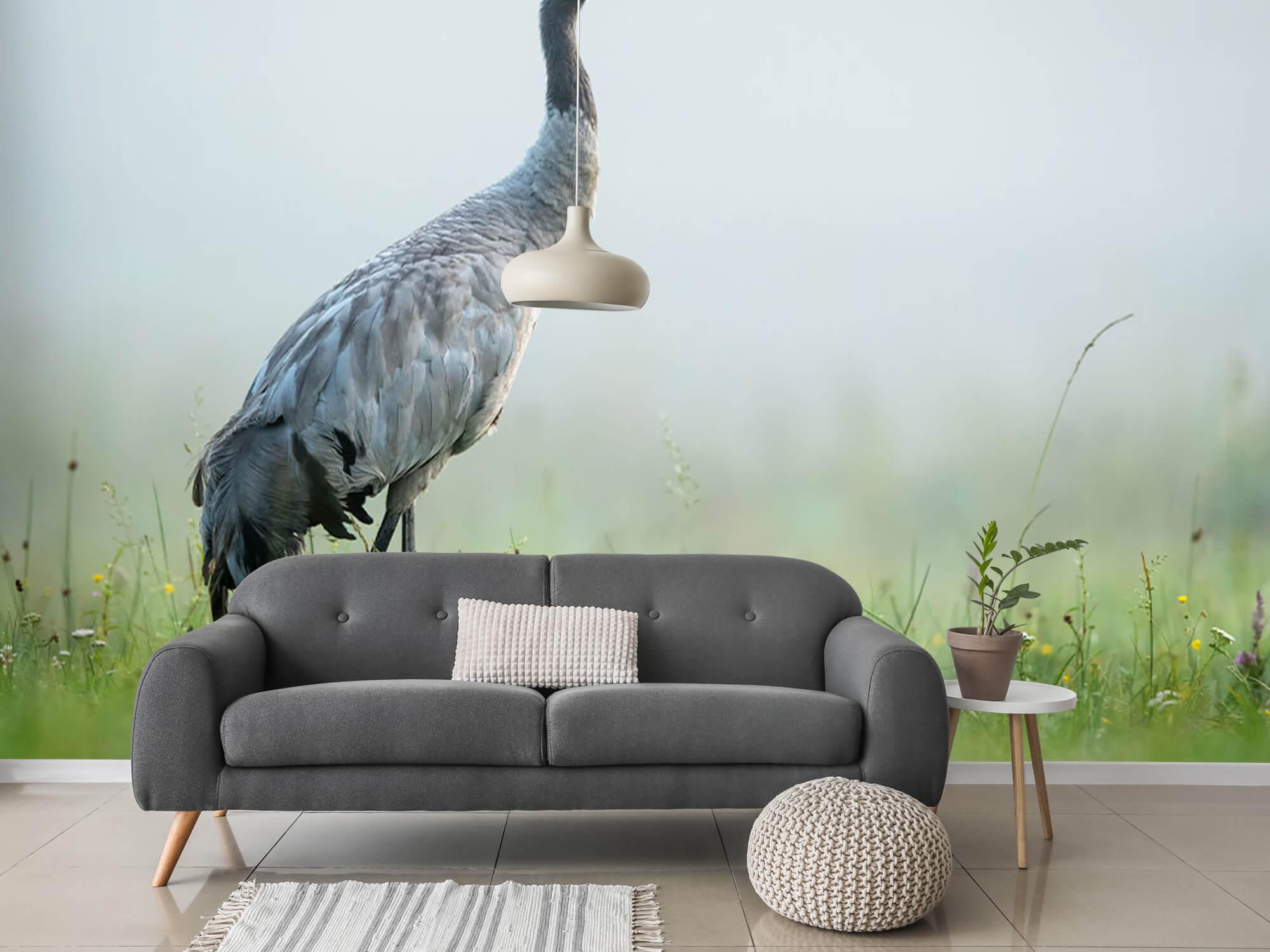 Kraanvogel in de ochtendmist 4