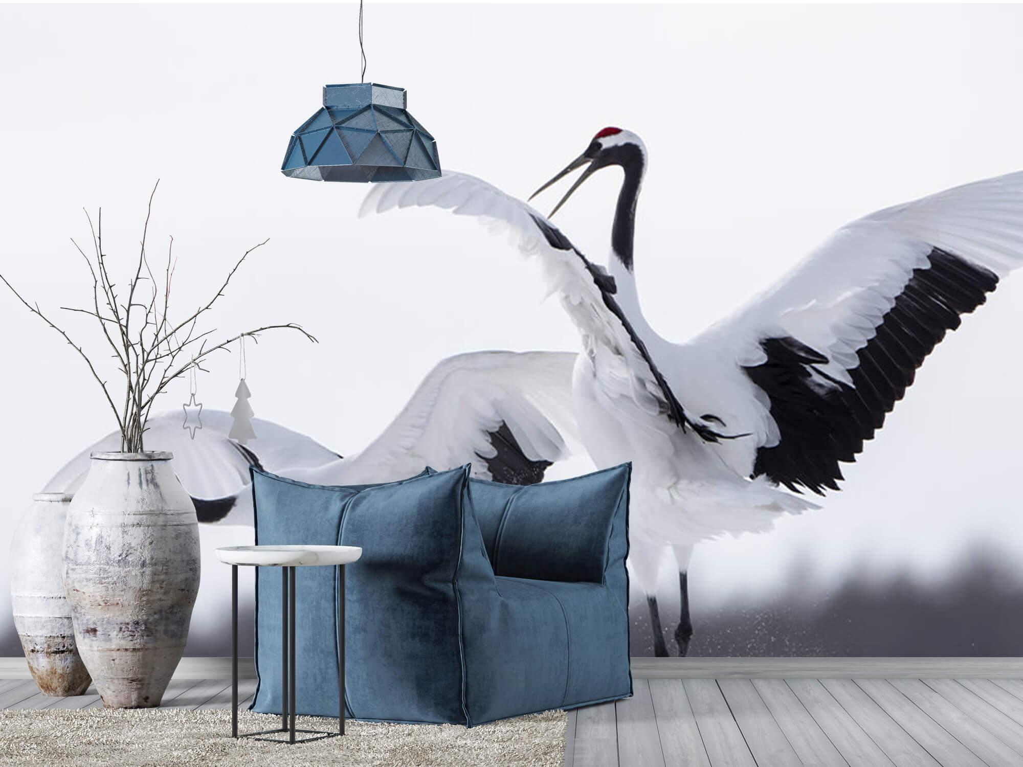 Spelende kraanvogels 8