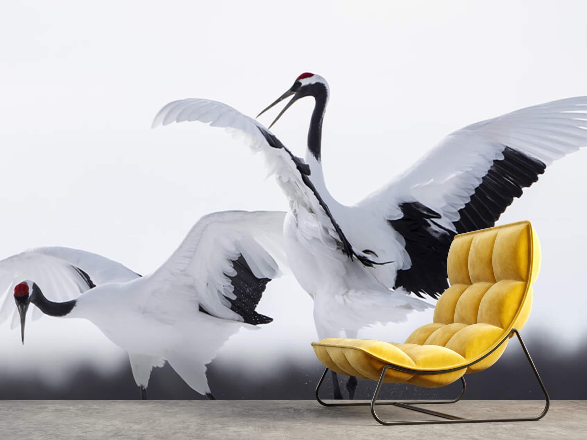 Spelende kraanvogels 10