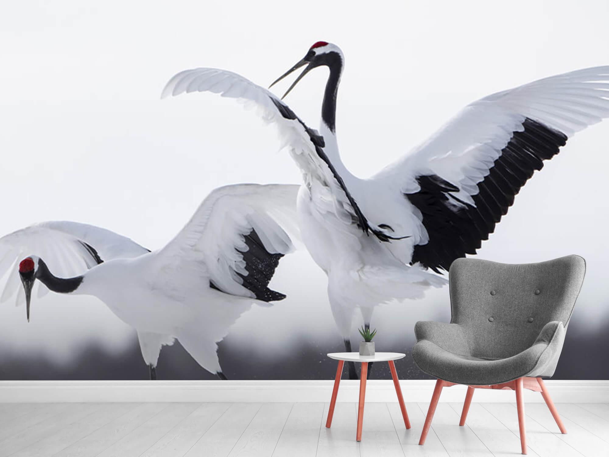Spelende kraanvogels 11