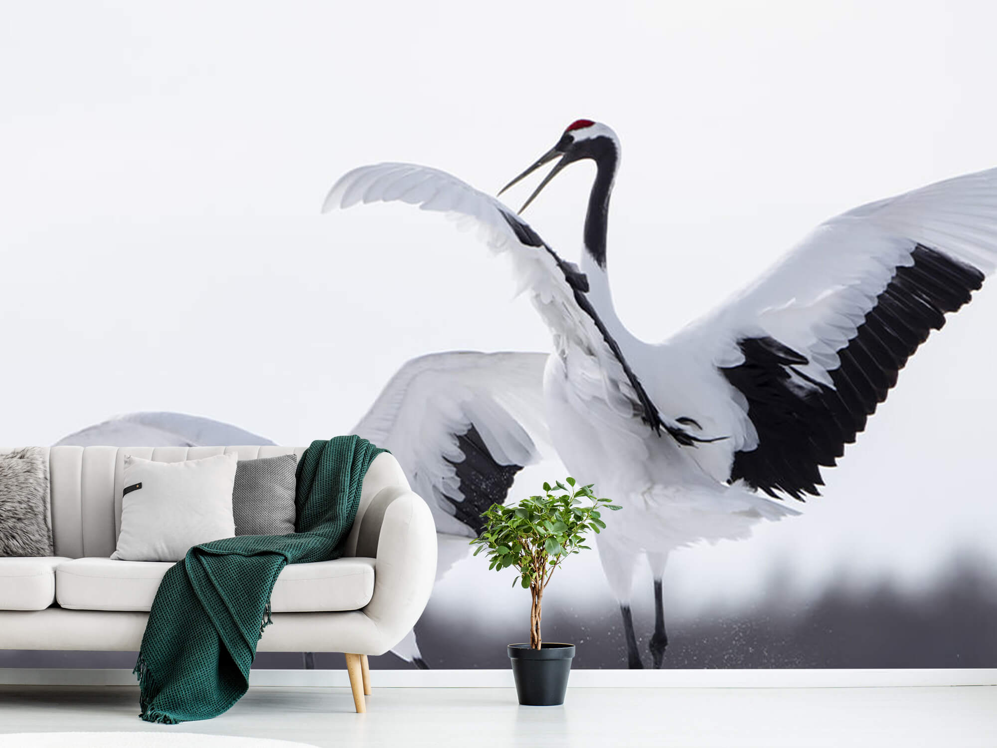 Spelende kraanvogels 3