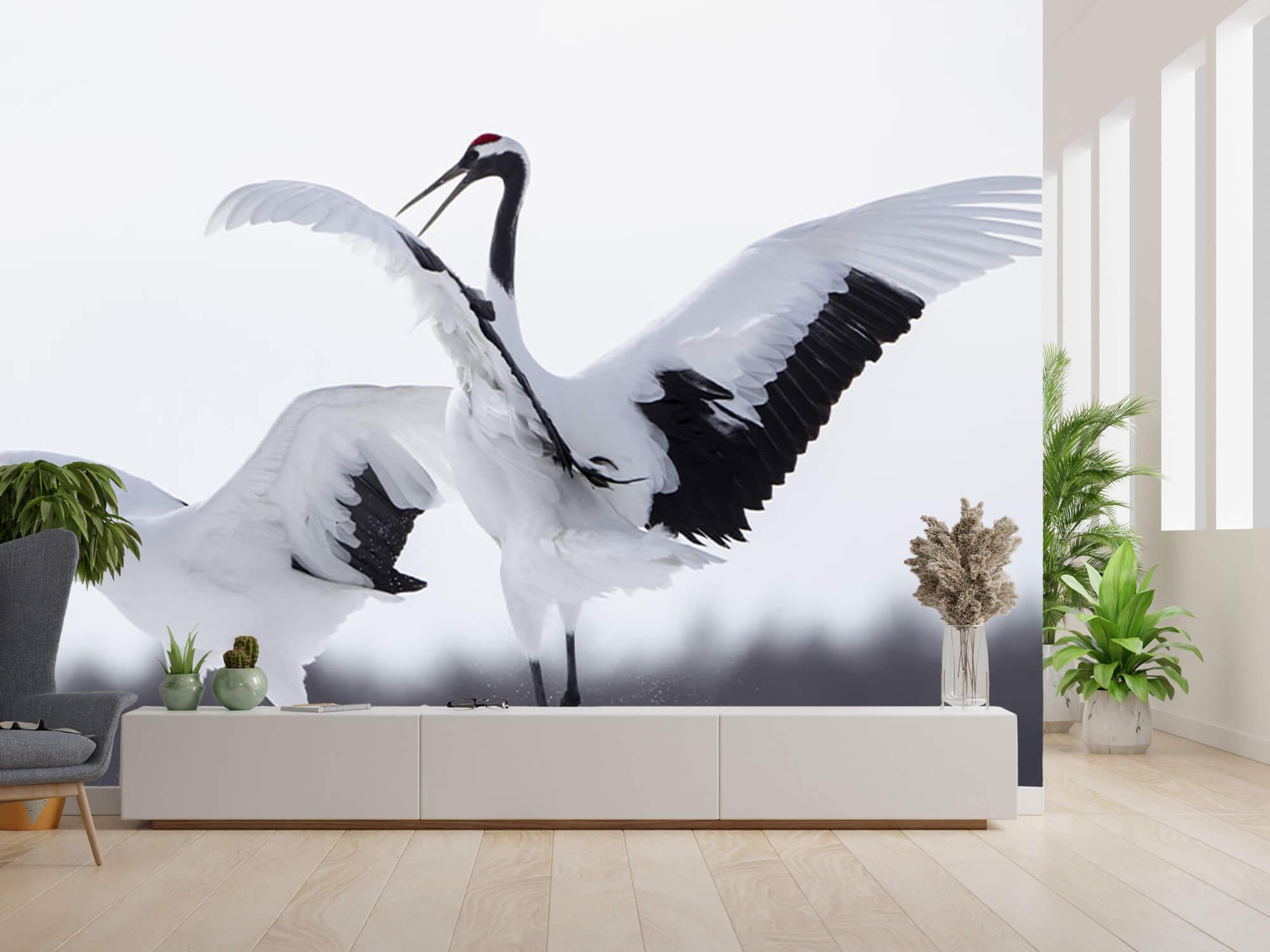 Spelende kraanvogels 1