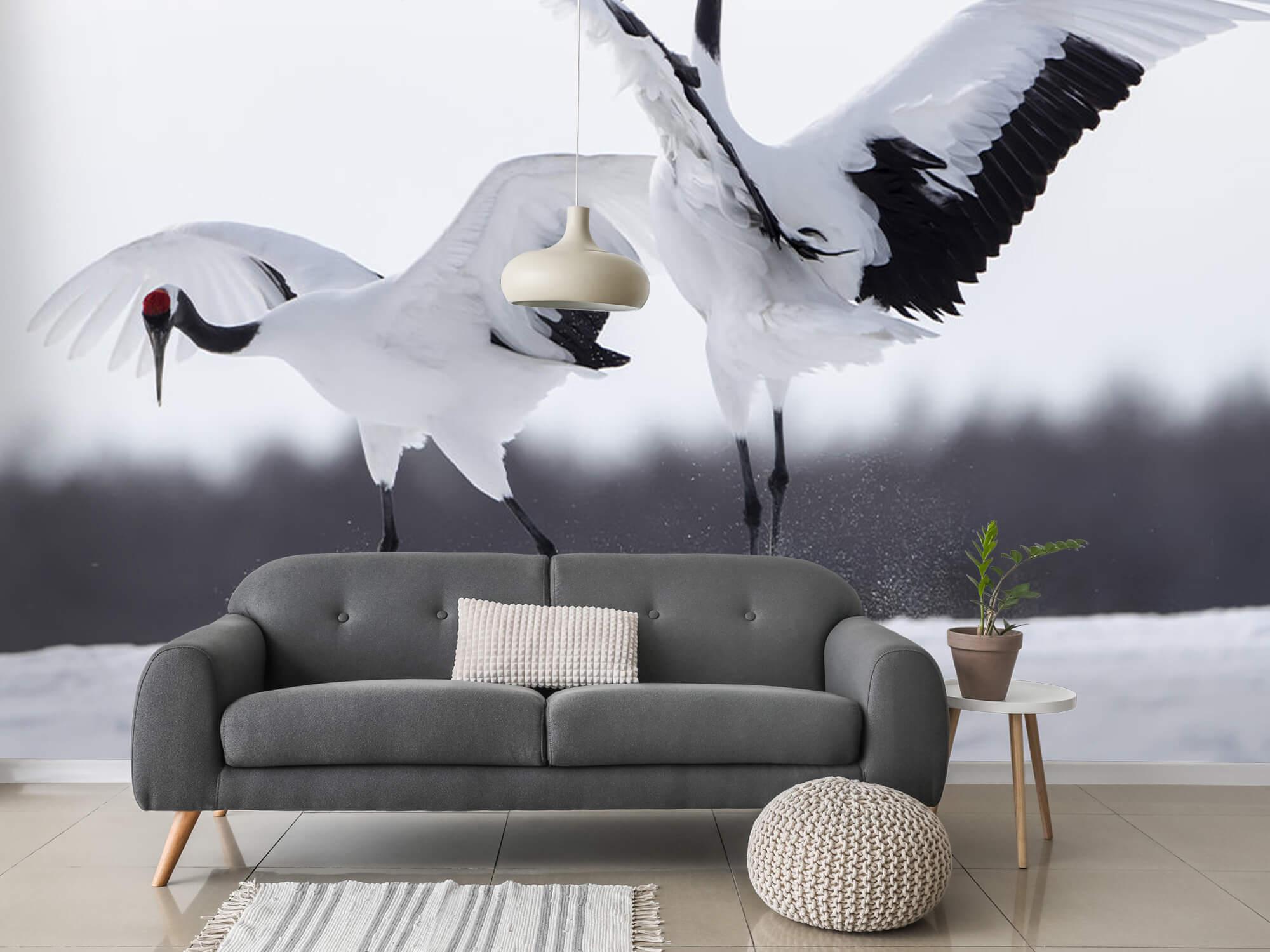 Spelende kraanvogels 9