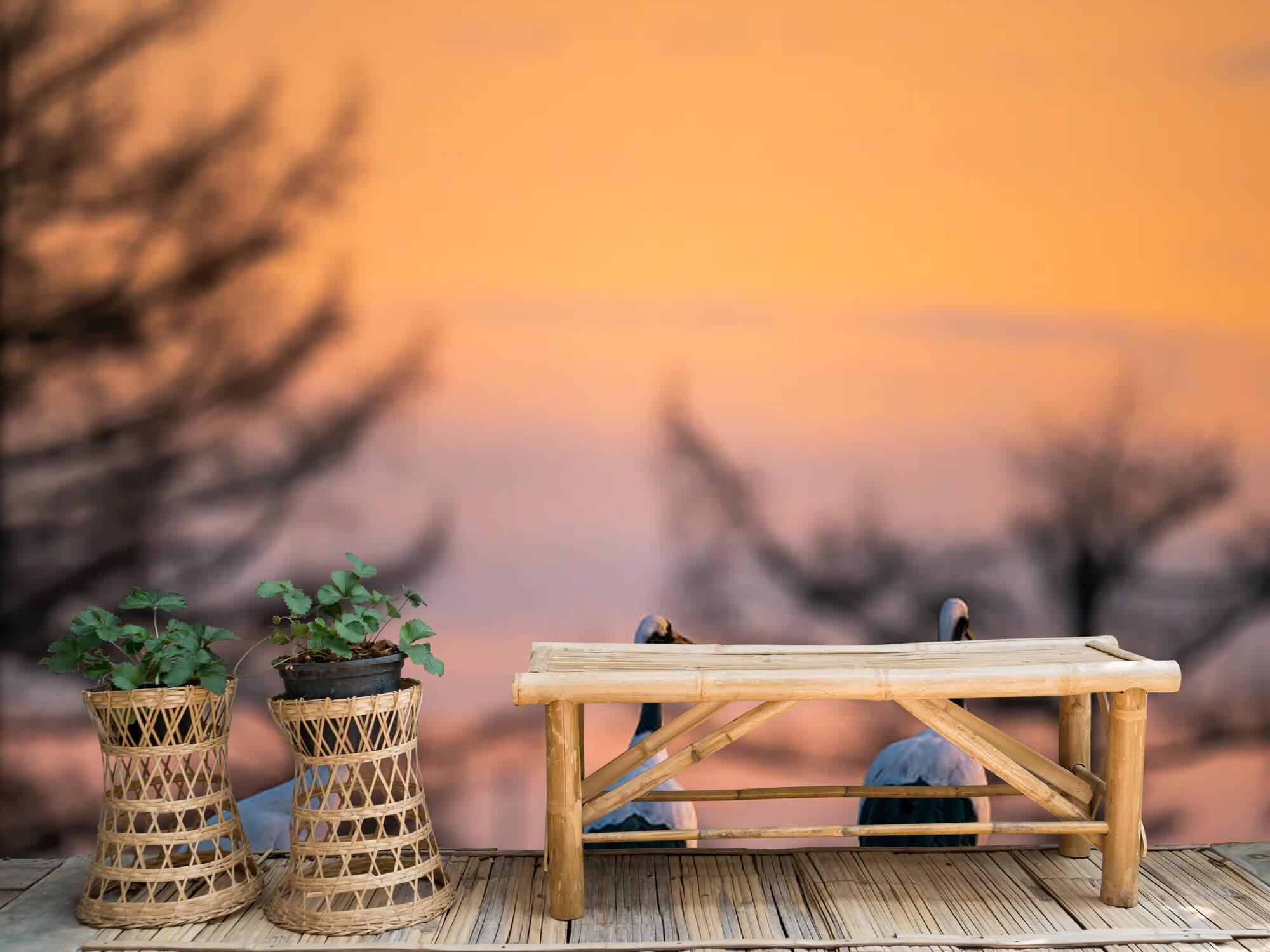 Kraanvogels bij zonsondergang 3