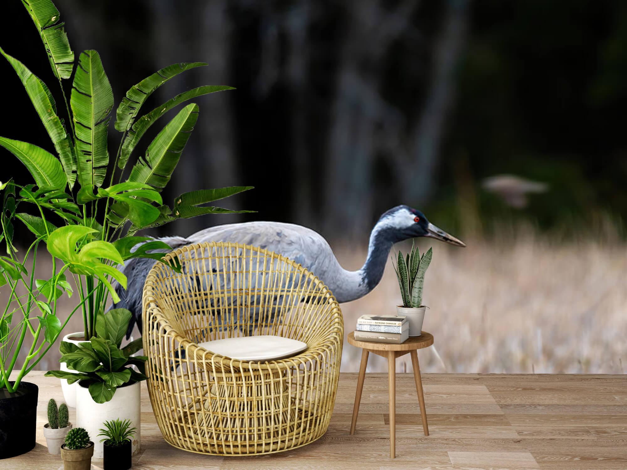 Lopende kraanvogel 7