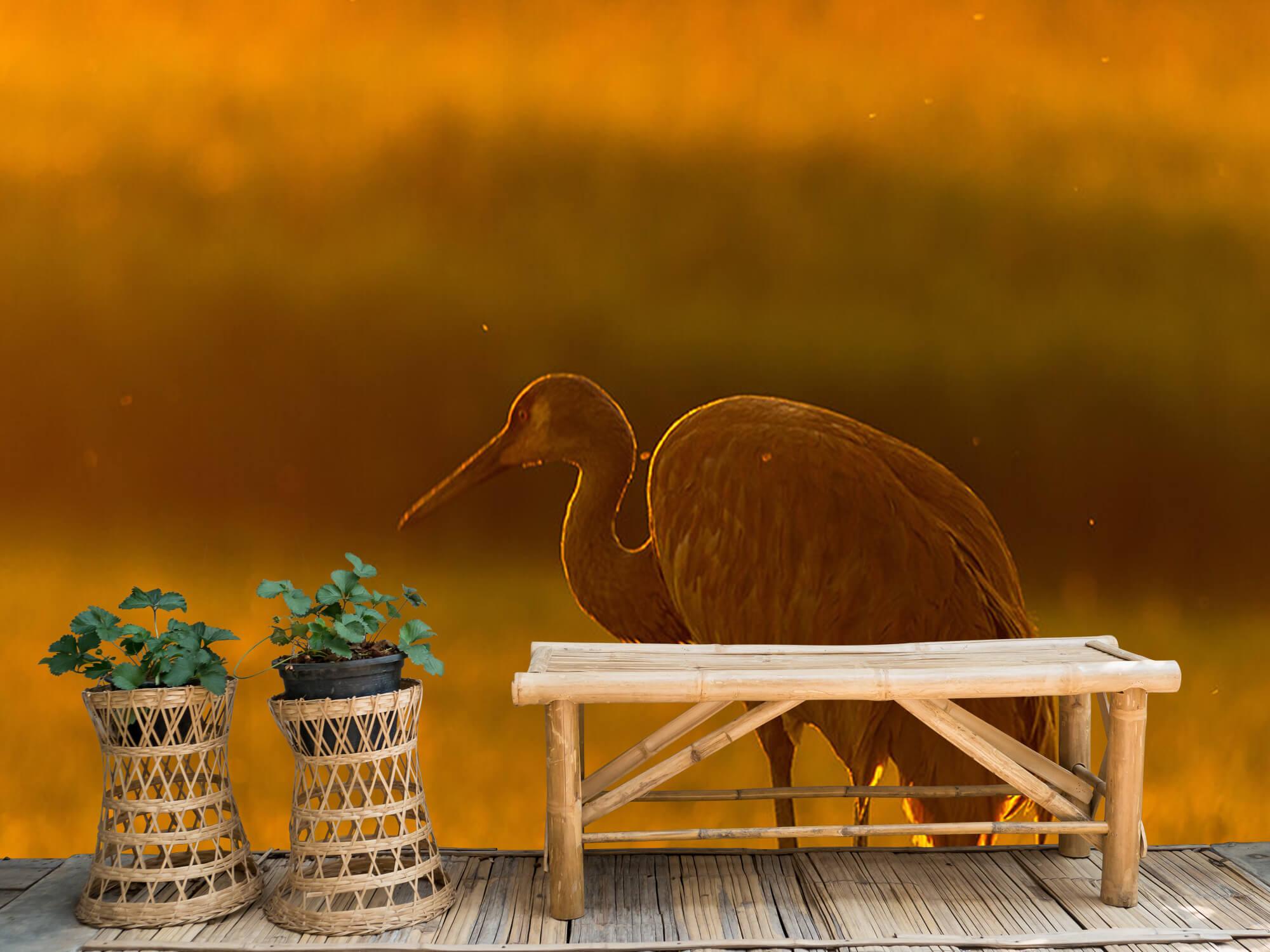 Kraanvogel met zonsondergang 3