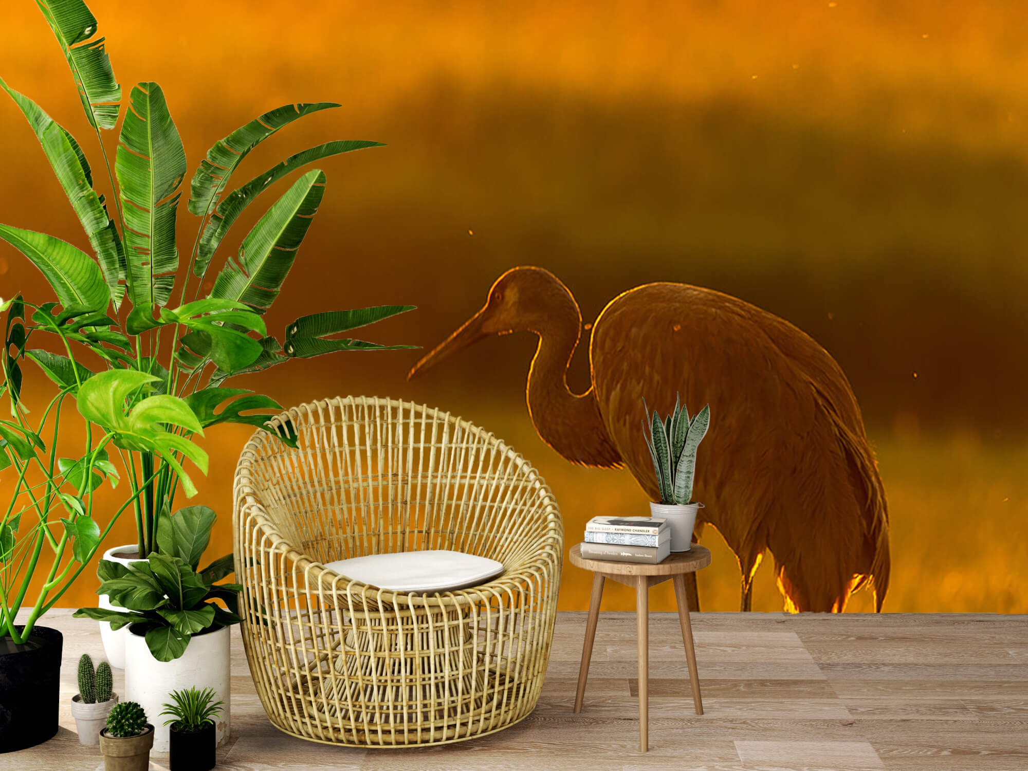 Kraanvogel met zonsondergang 9