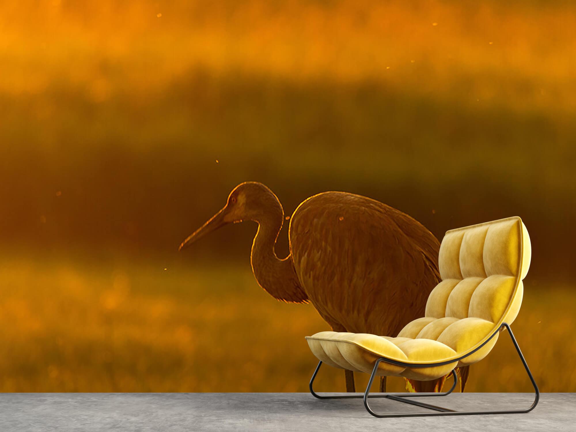 Kraanvogel met zonsondergang 5
