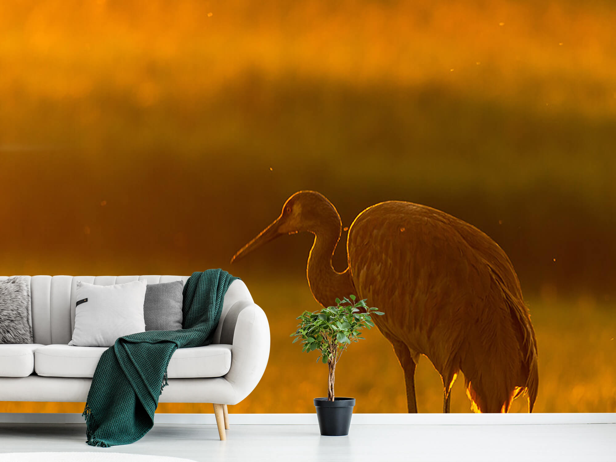 Kraanvogel met zonsondergang 1