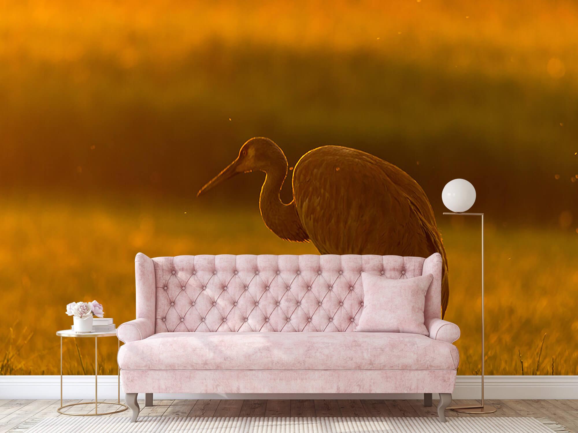 Kraanvogel met zonsondergang 10