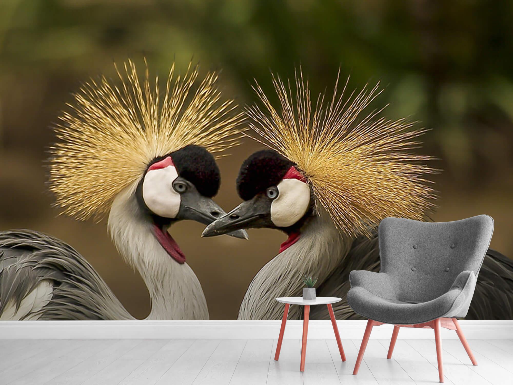 Kraanvogel paar 1