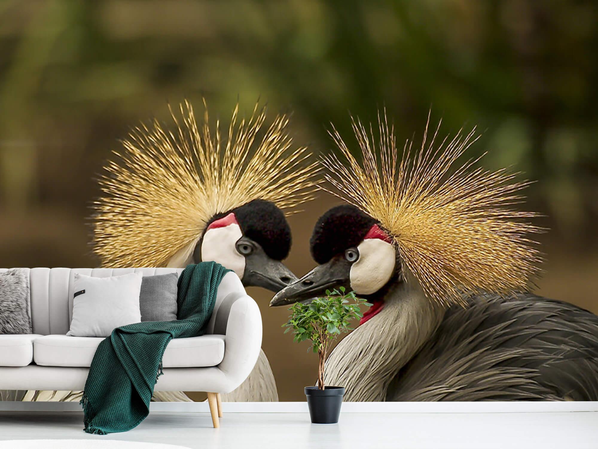 Kraanvogel paar 5