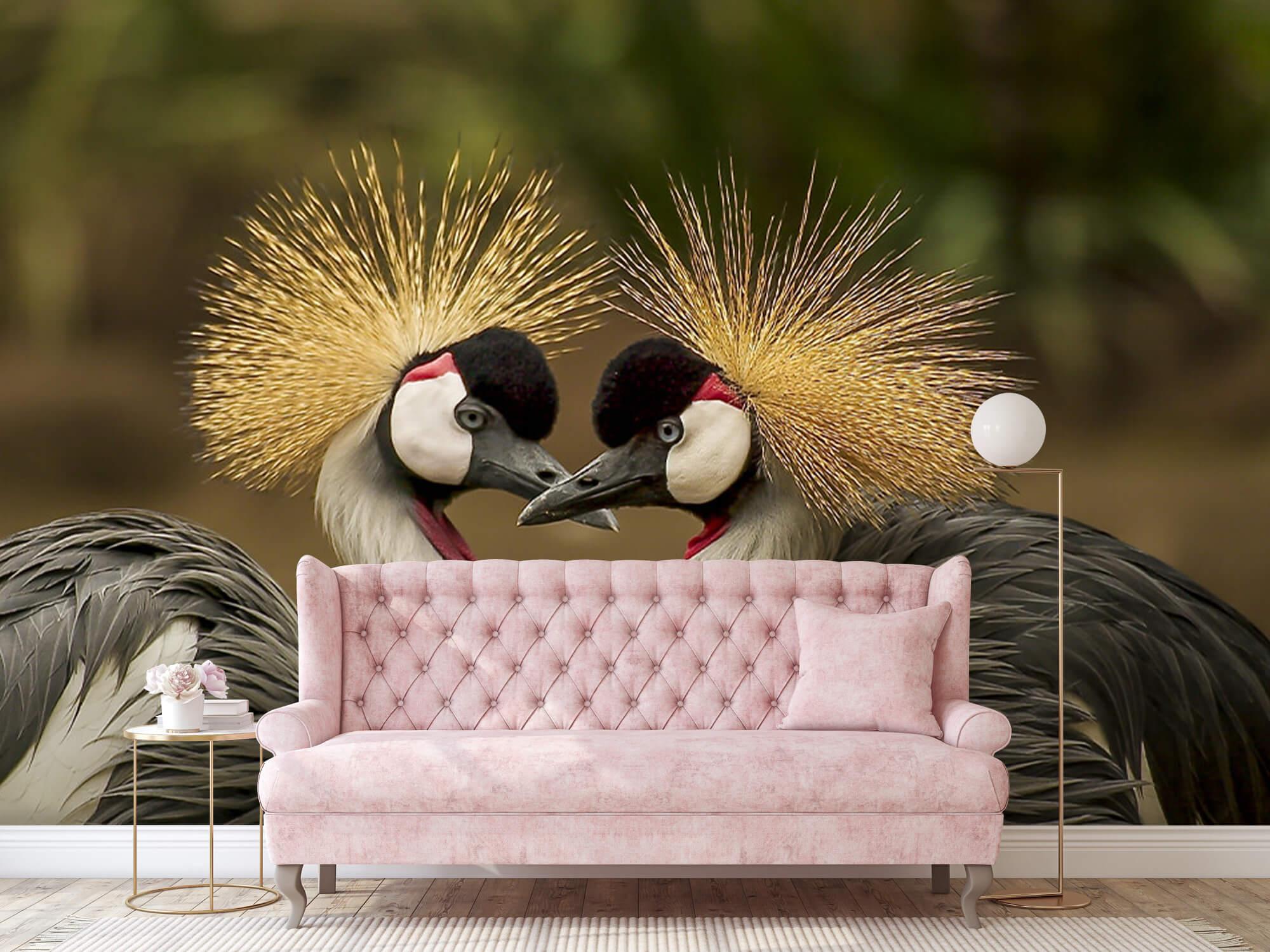 Kraanvogel paar 11