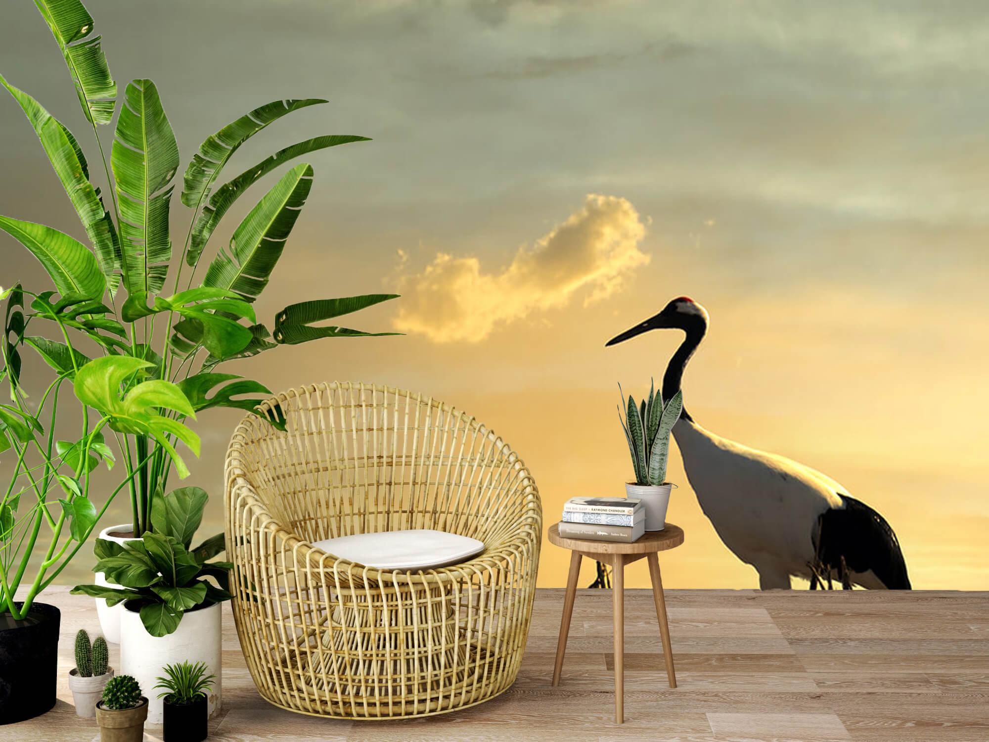 Kraanvogel in een veld 7
