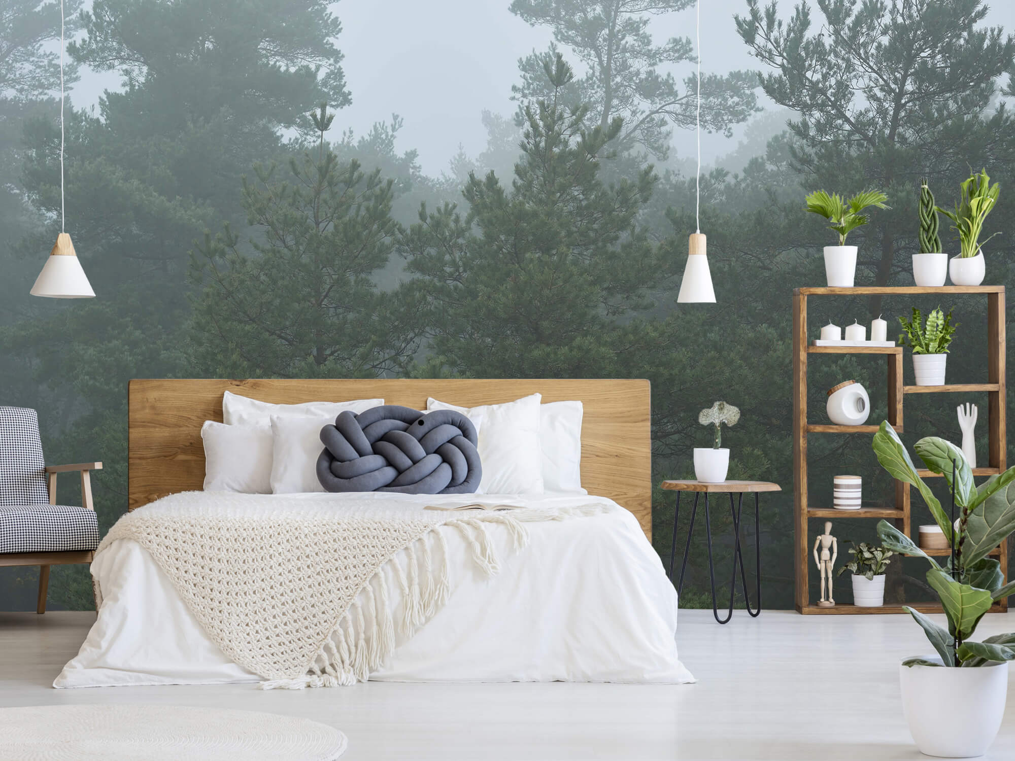 Natuur Naaldbomen in de mist 11