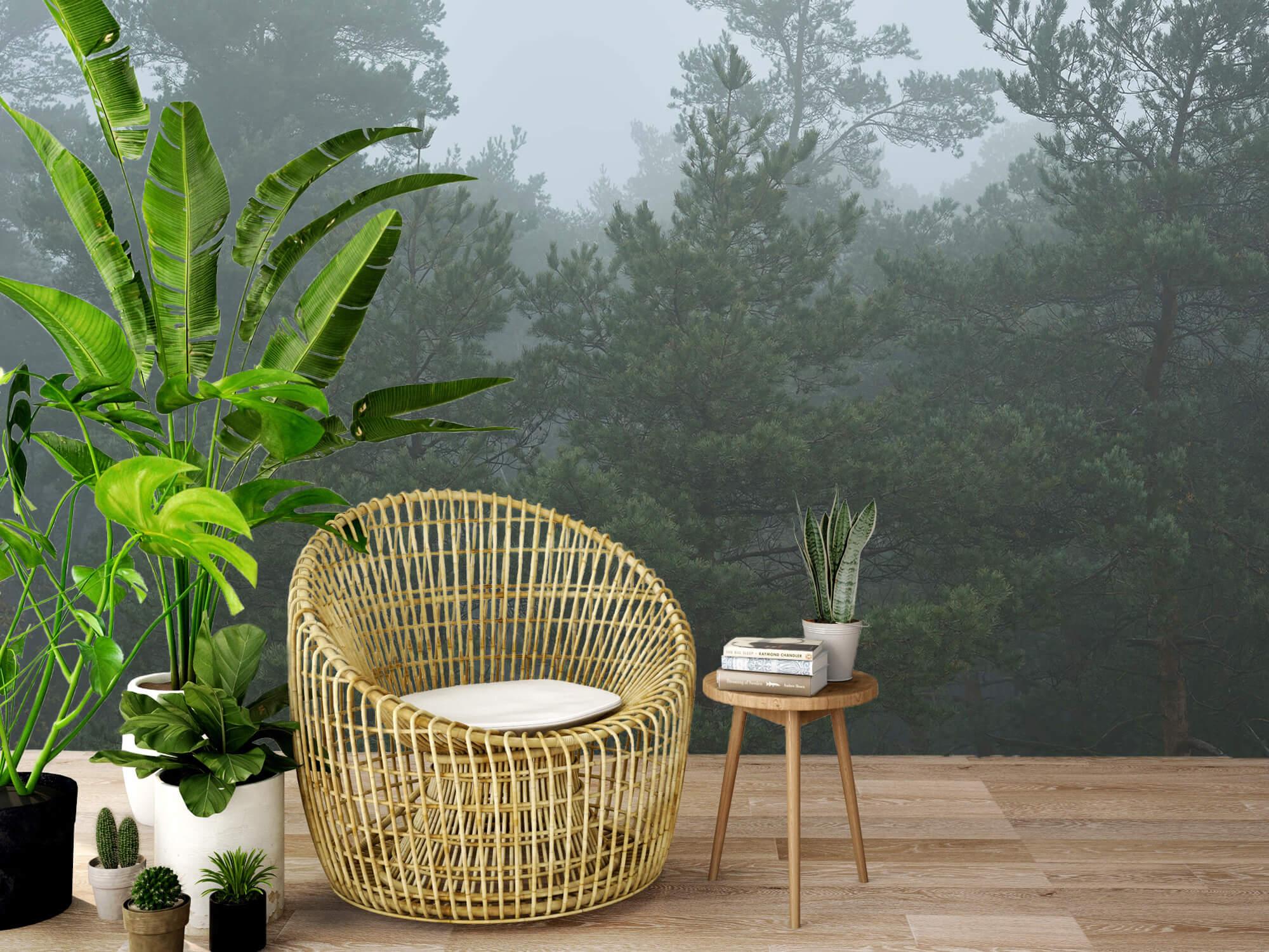 Natuur Naaldbomen in de mist 9