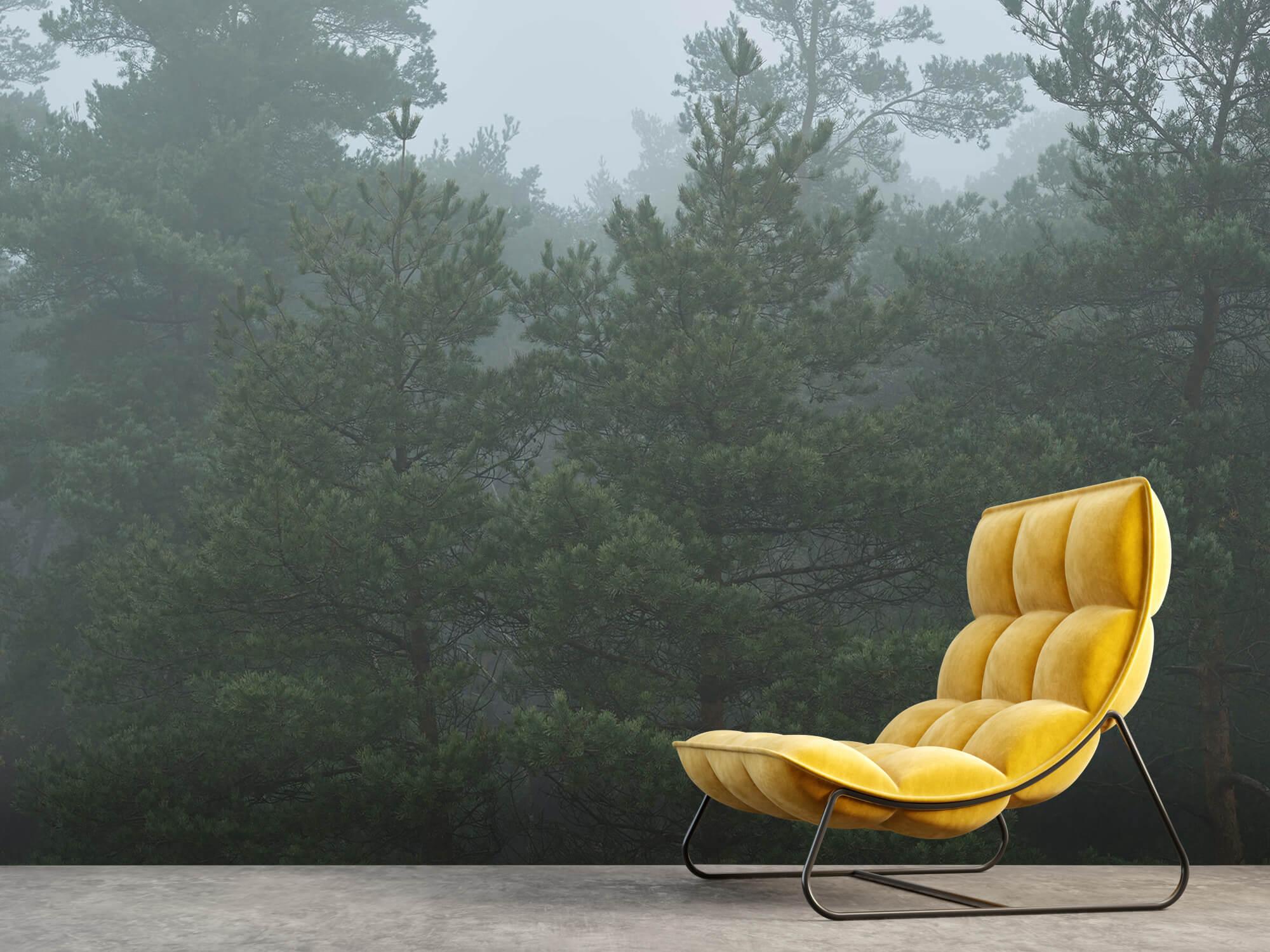 Natuur Naaldbomen in de mist 10