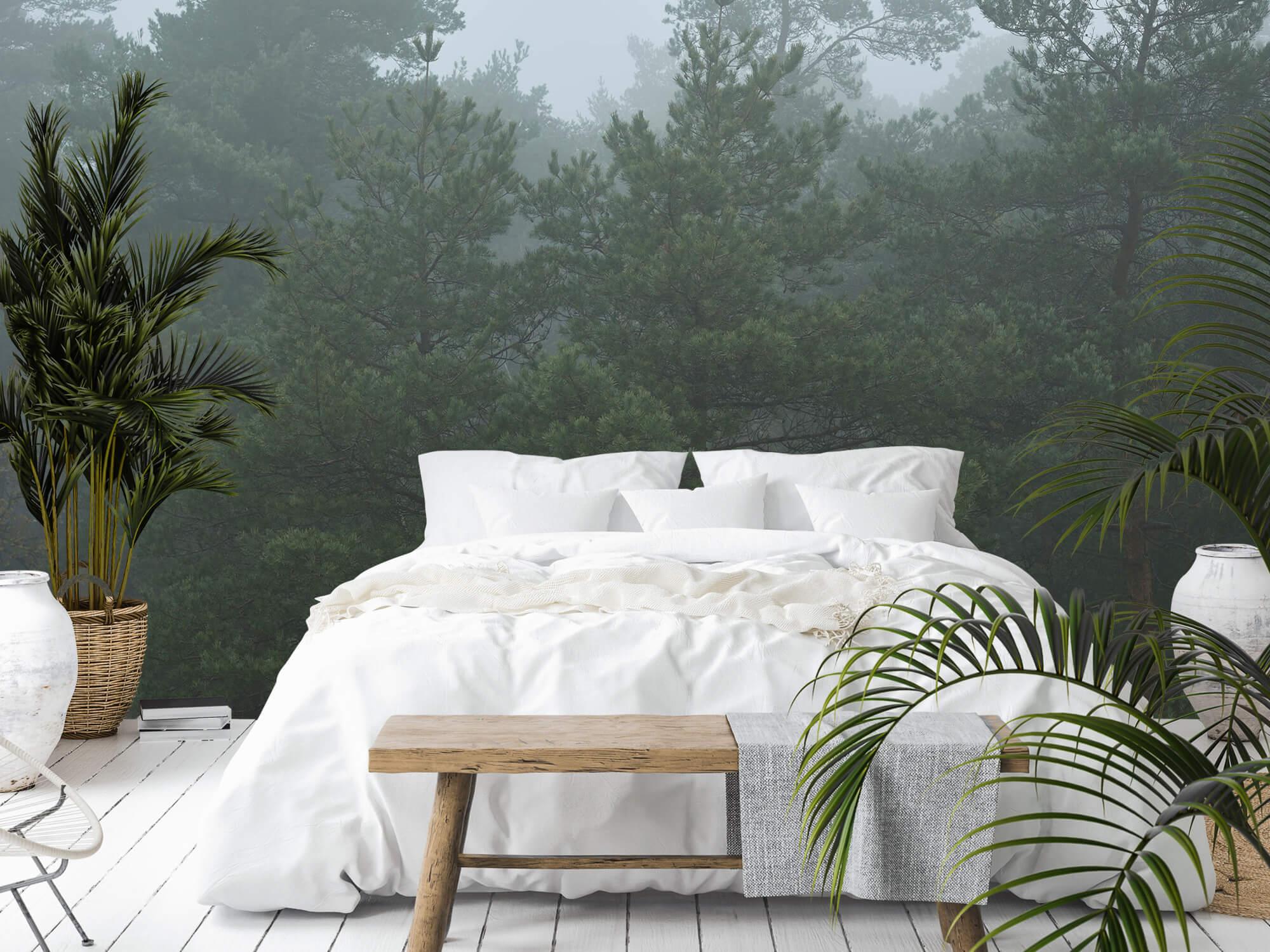Natuur Naaldbomen in de mist 3