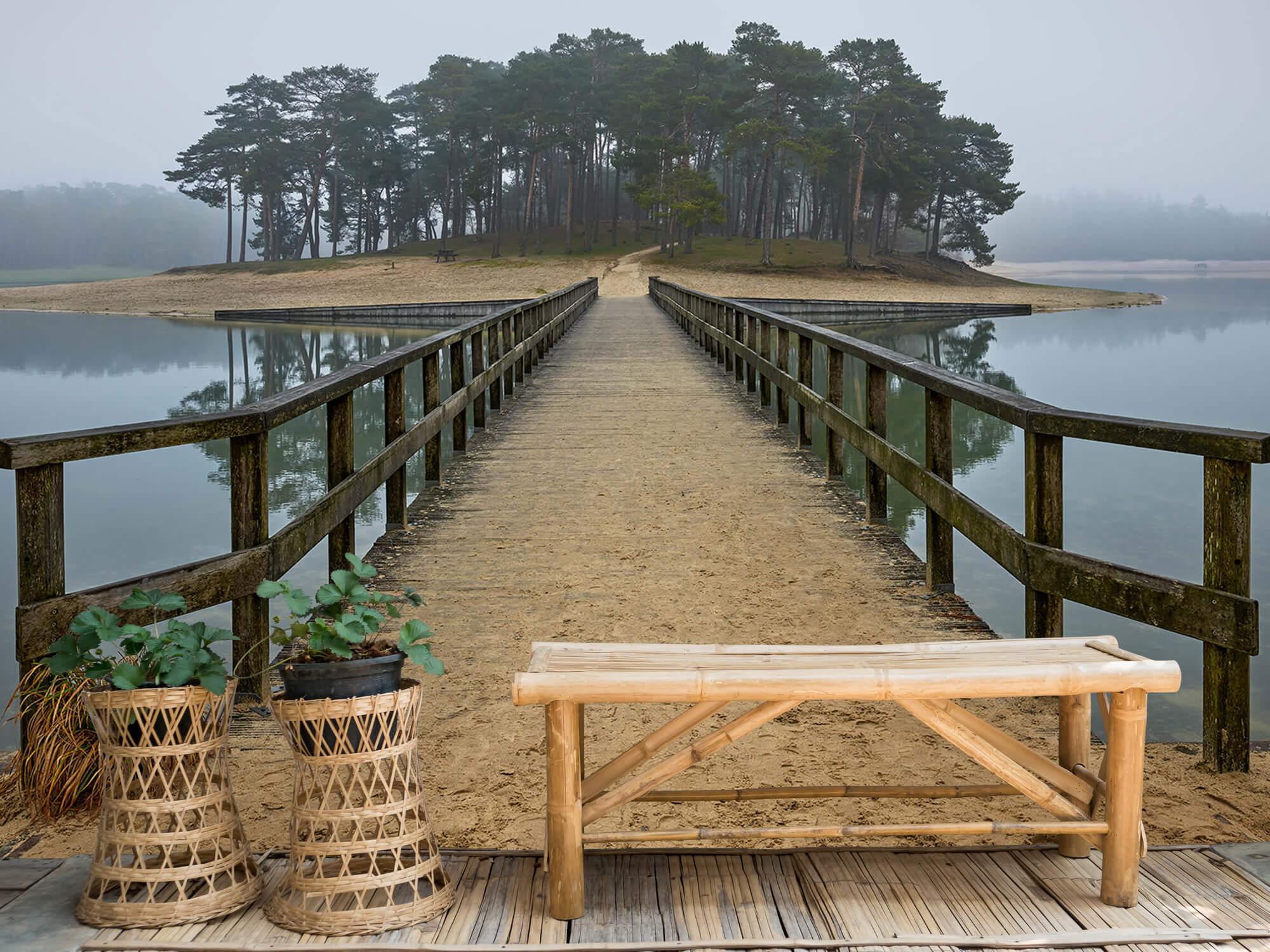 Natuur Eiland in de mist 5
