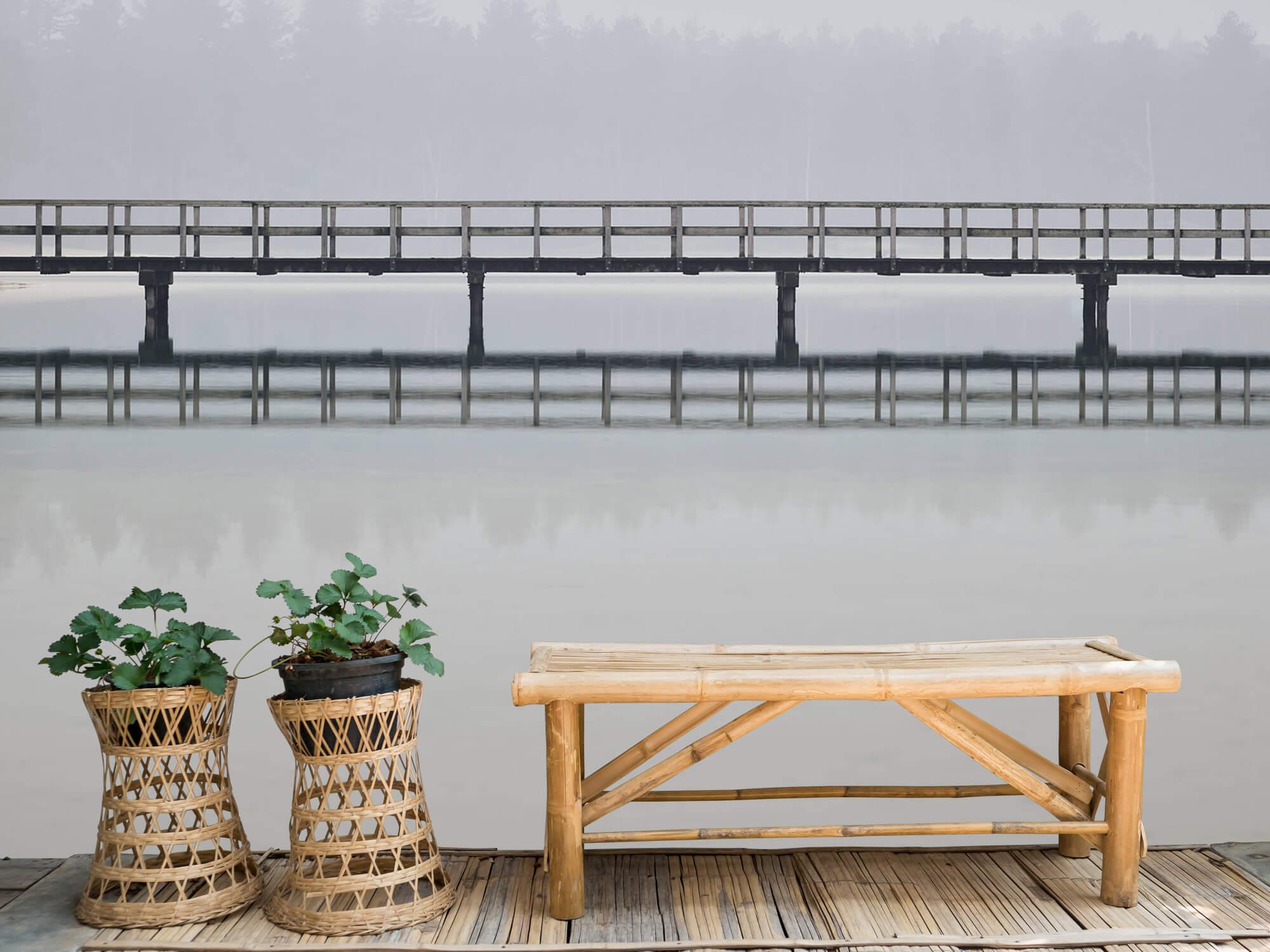 Natuur Brug in de mist 11
