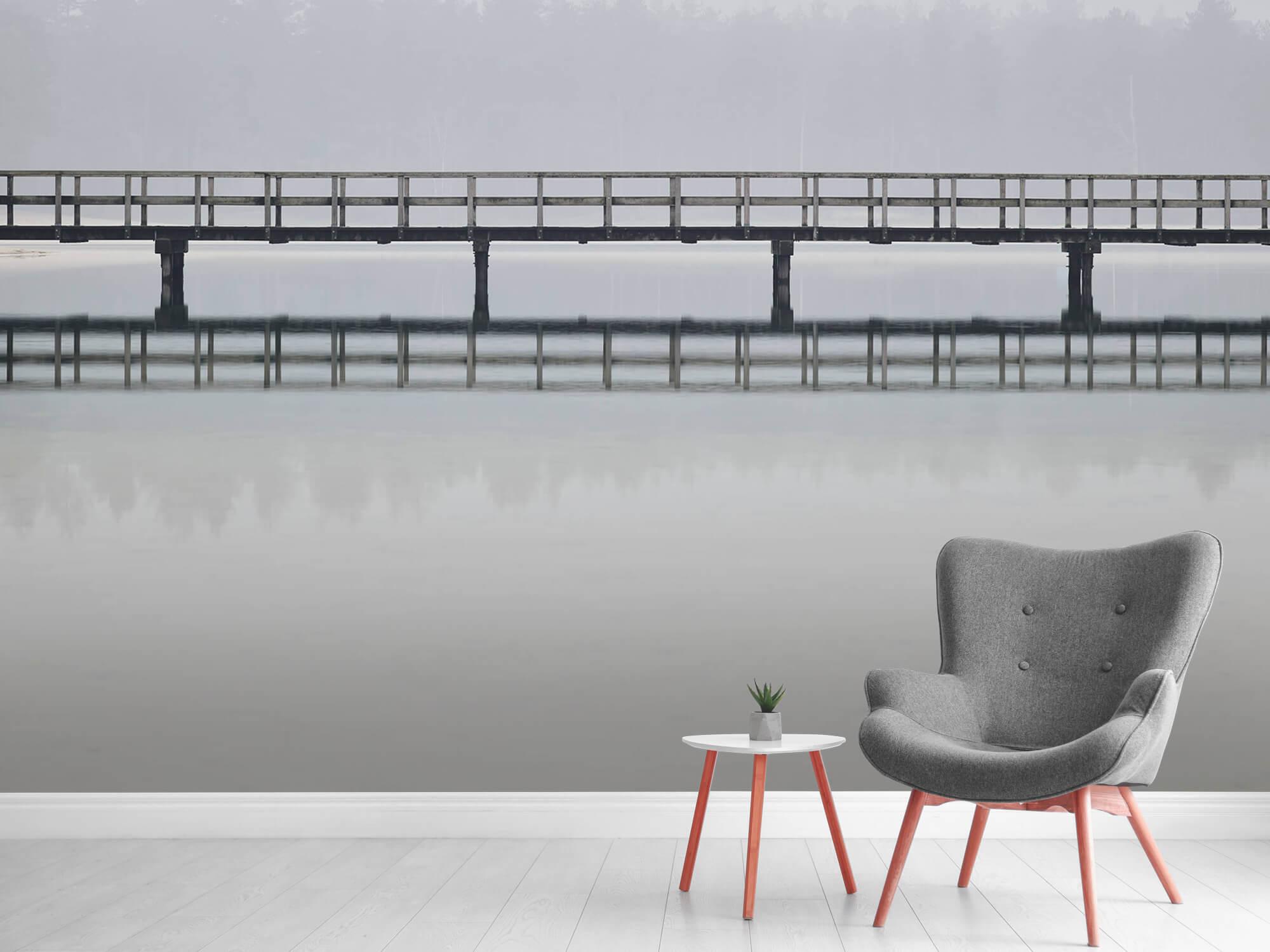 Natuur Brug in de mist 7
