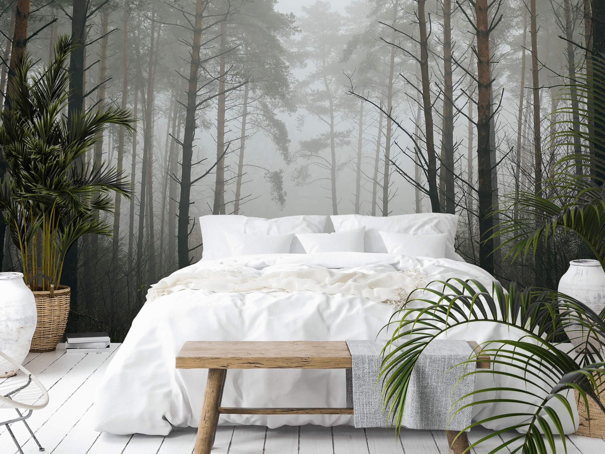 Natuur Pad in mistig bos 7