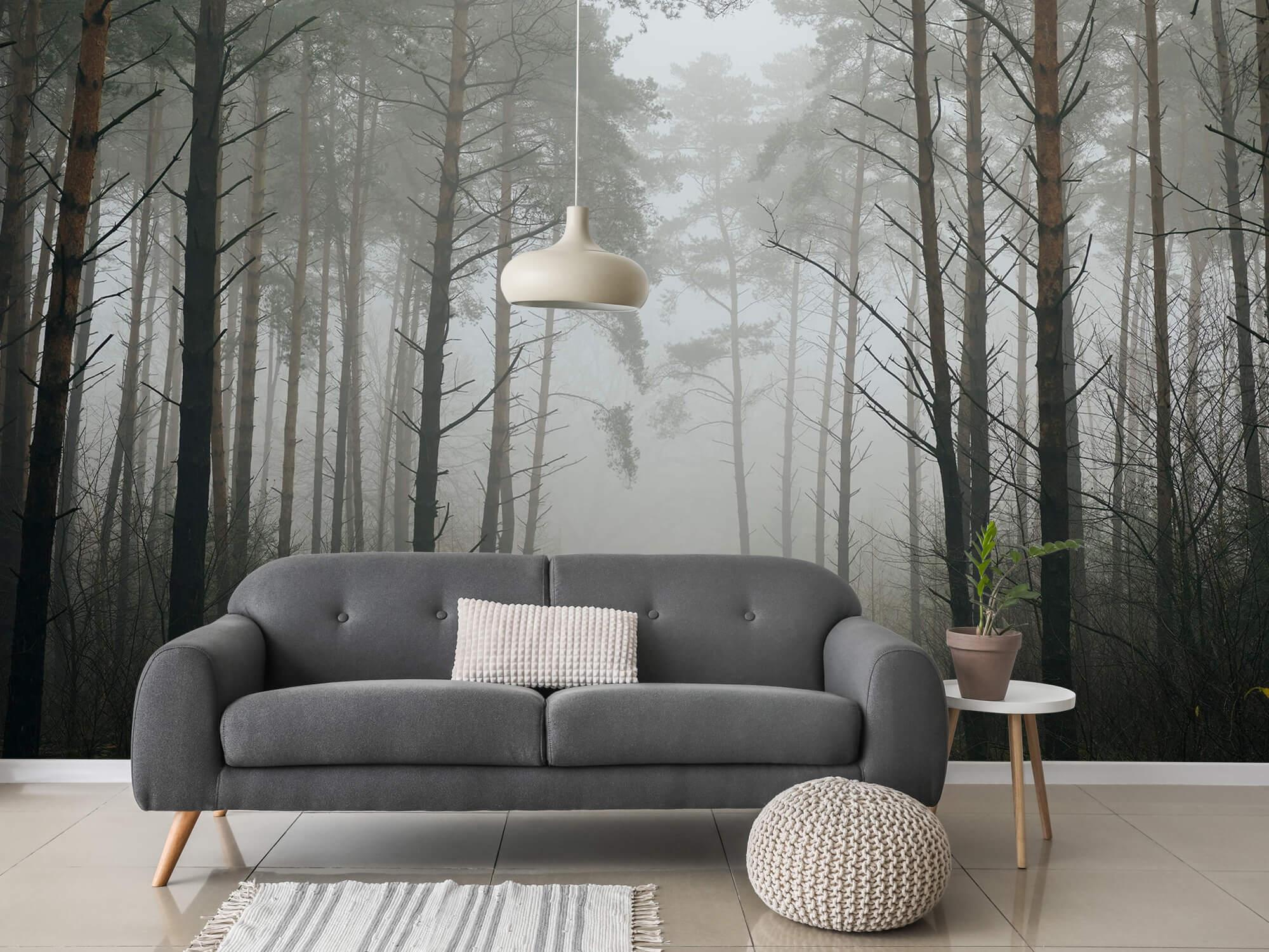 Natuur Pad in mistig bos 2